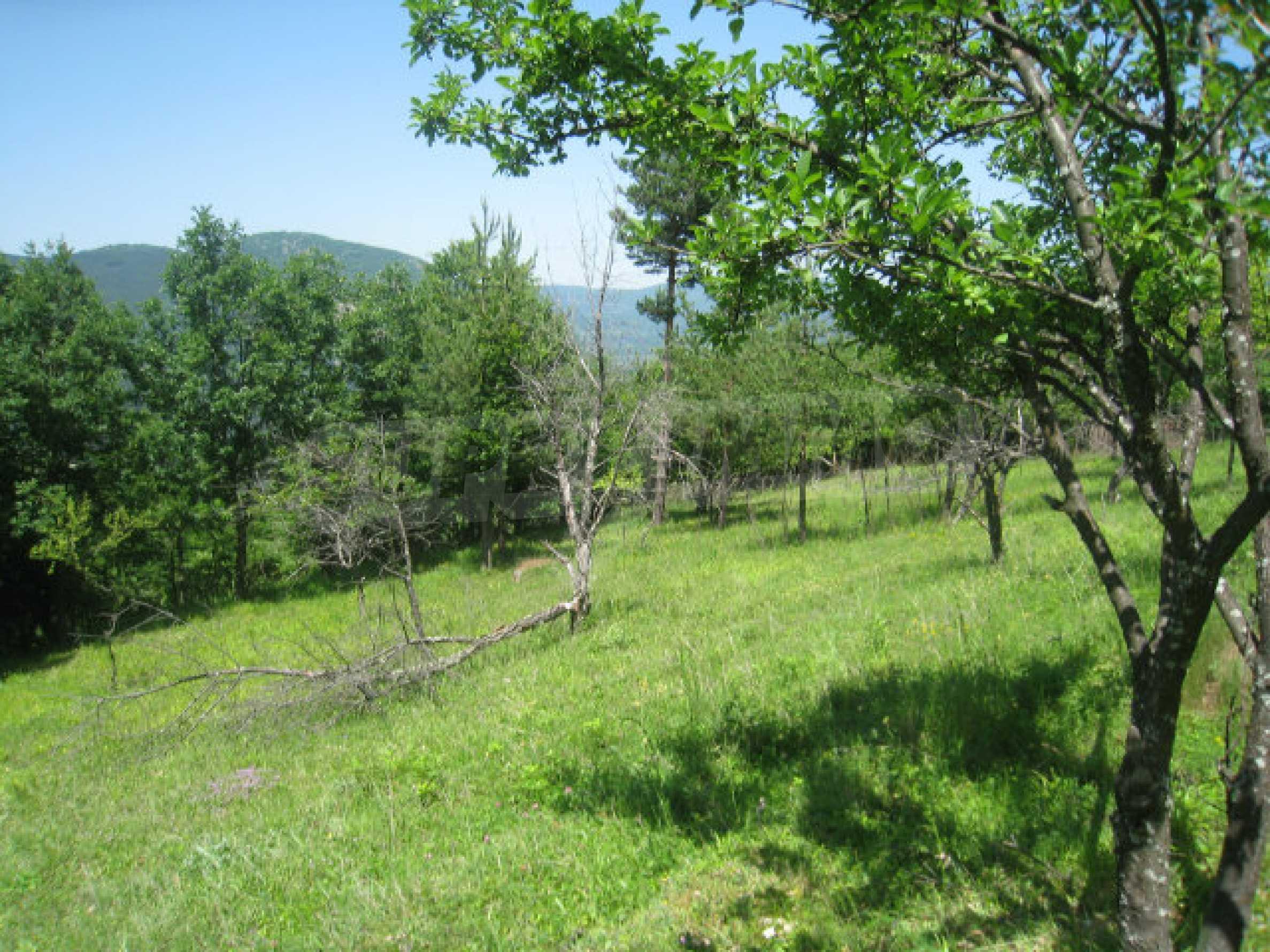Plot for sale in villa area of Svoge 9