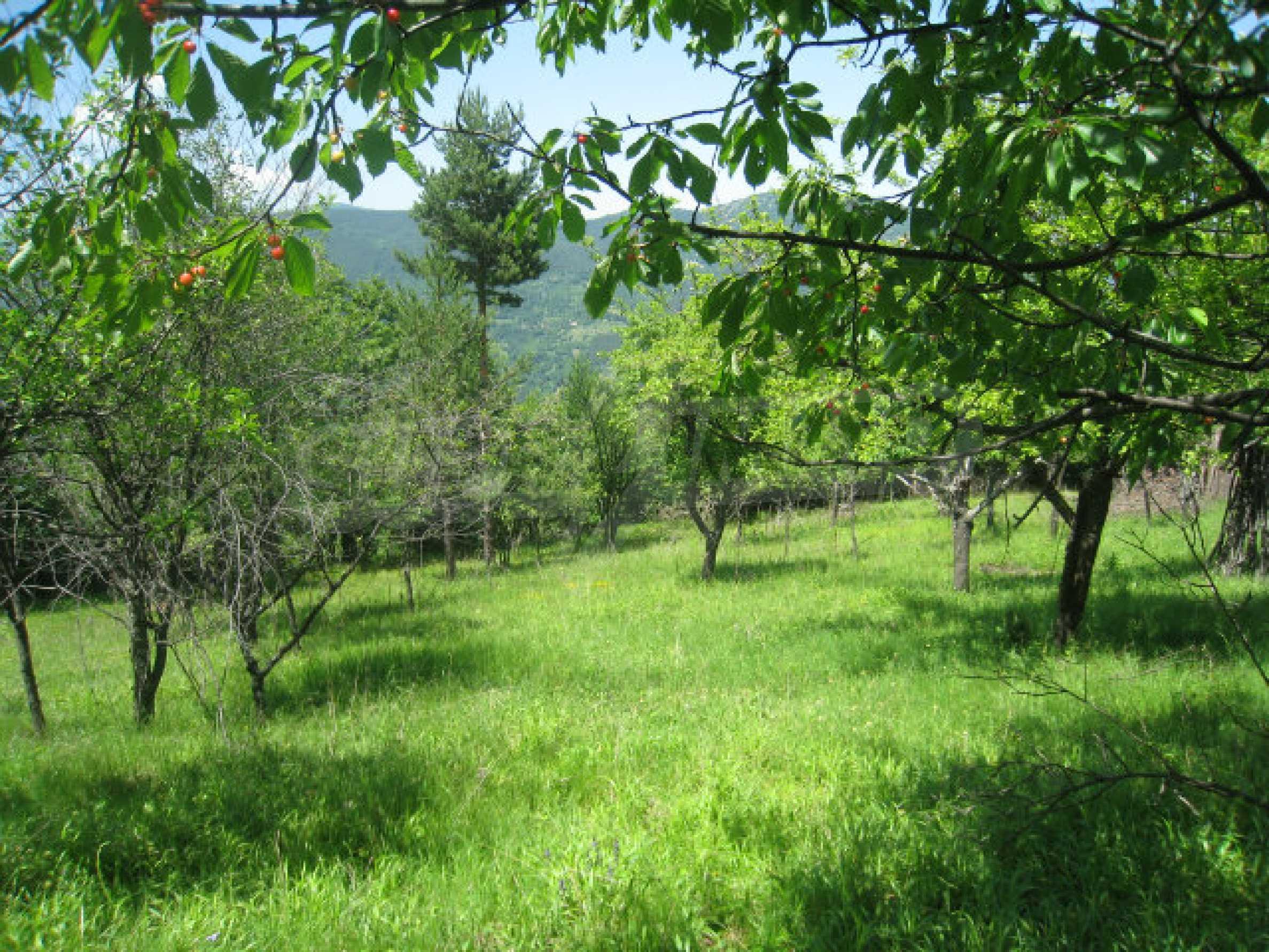 Plot for sale in villa area of Svoge 17