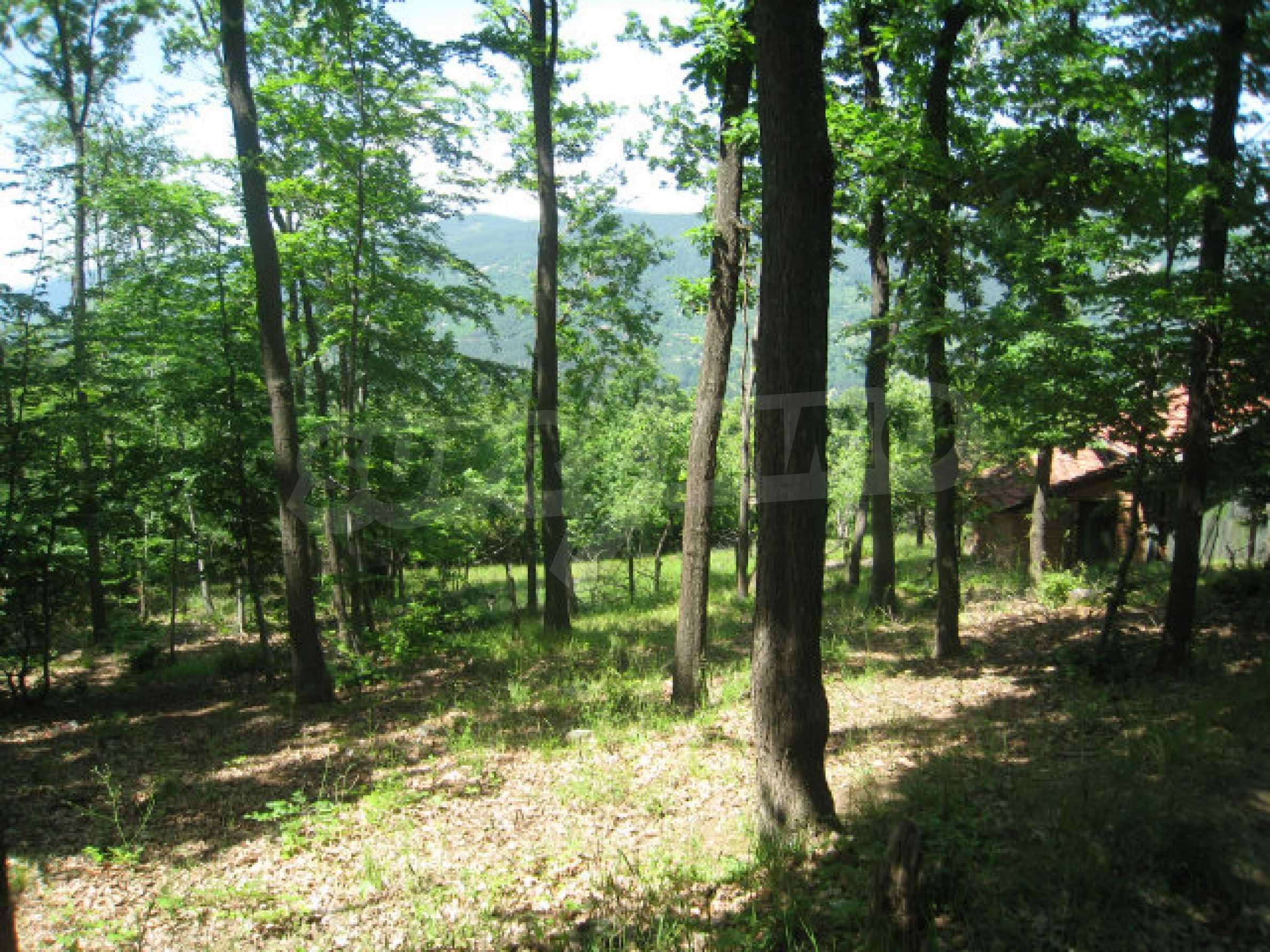 Plot for sale in villa area of Svoge 1