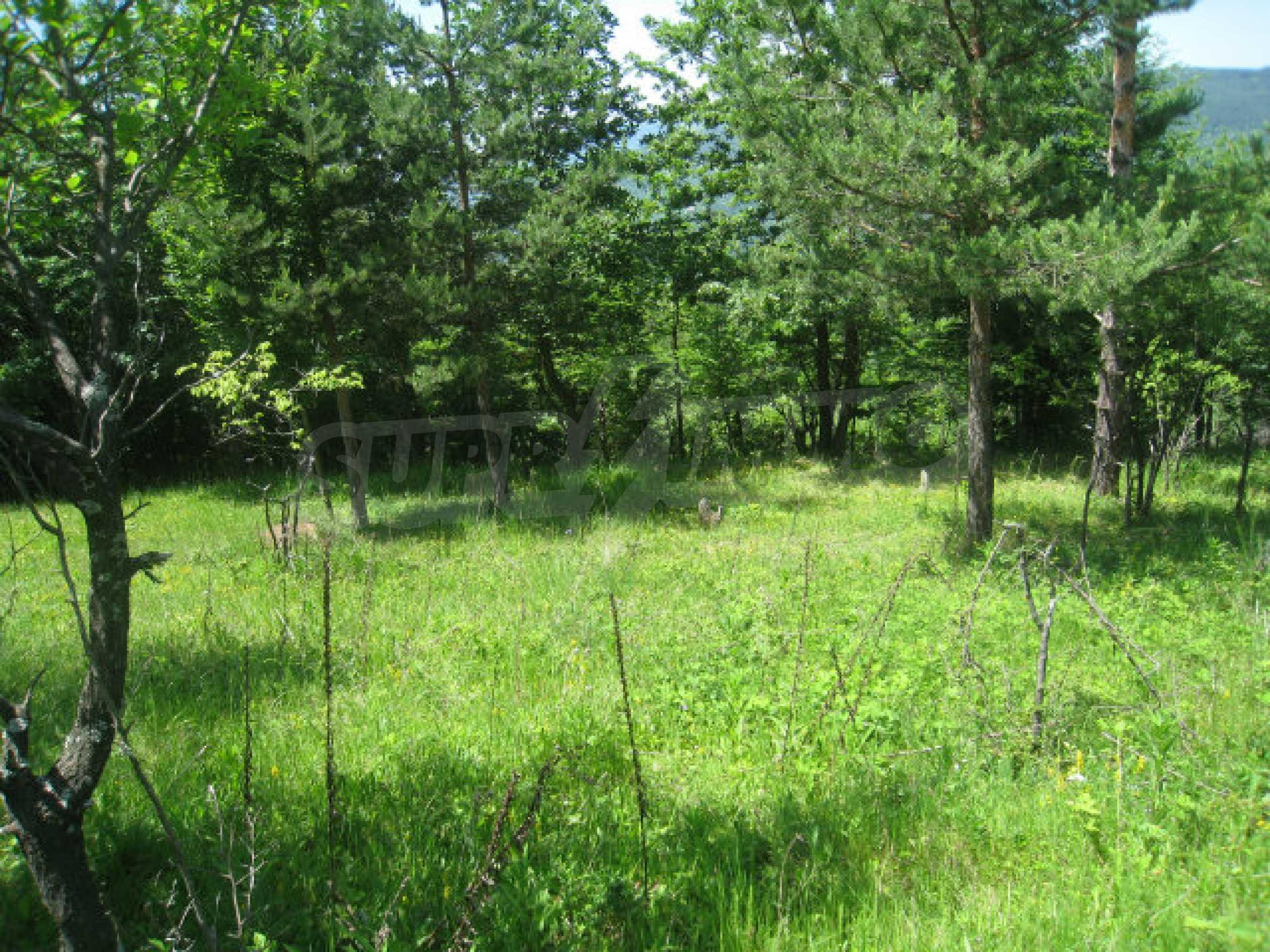 Plot for sale in villa area of Svoge 21