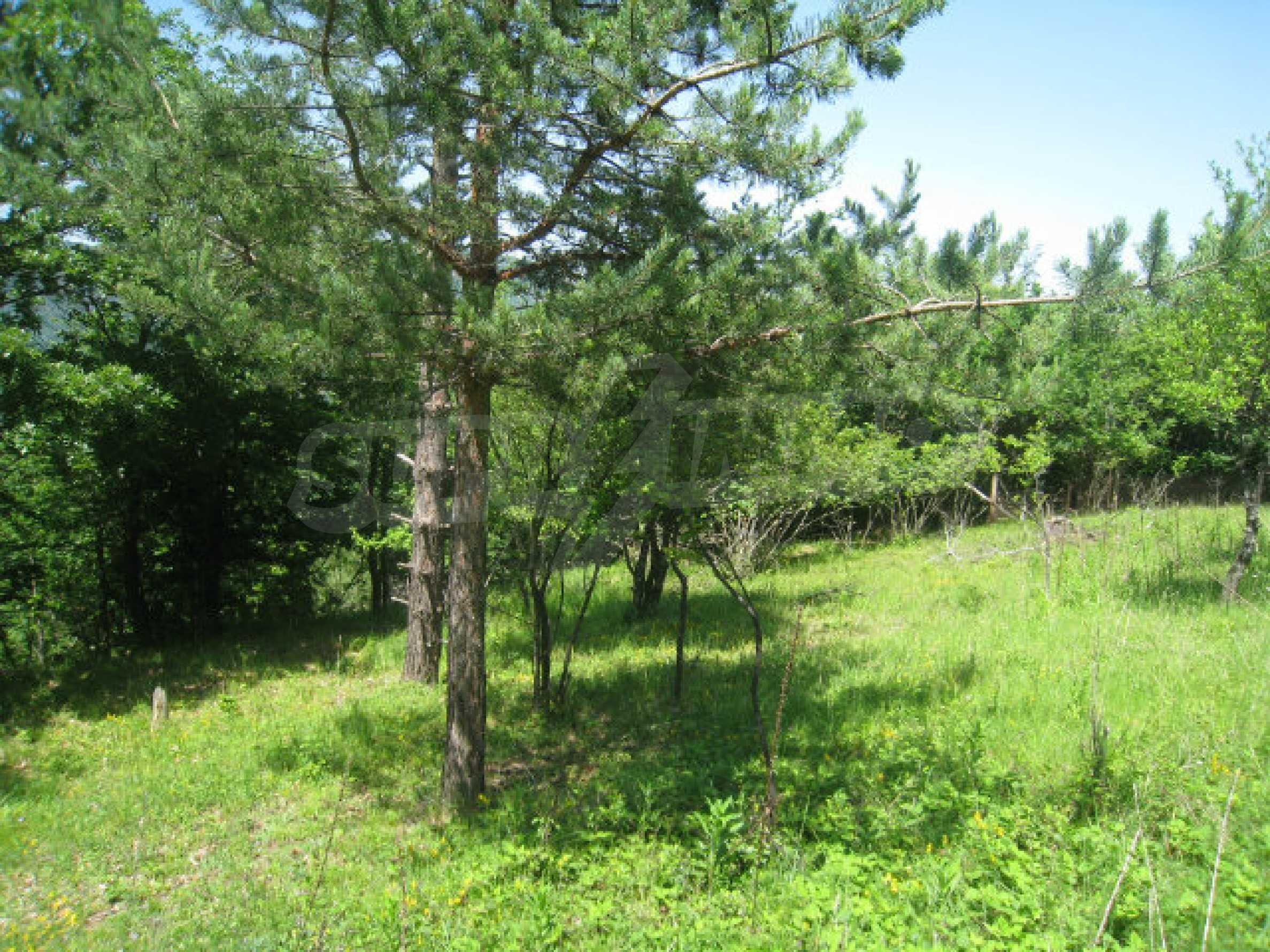 Plot for sale in villa area of Svoge 22
