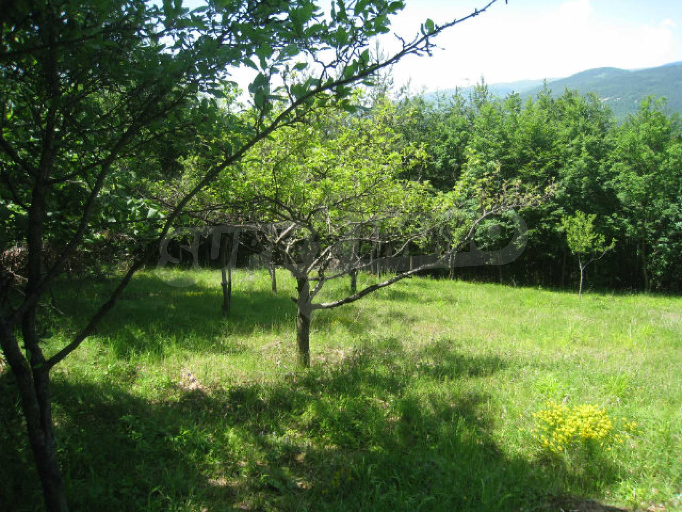 Plot for sale in villa area of Svoge 5