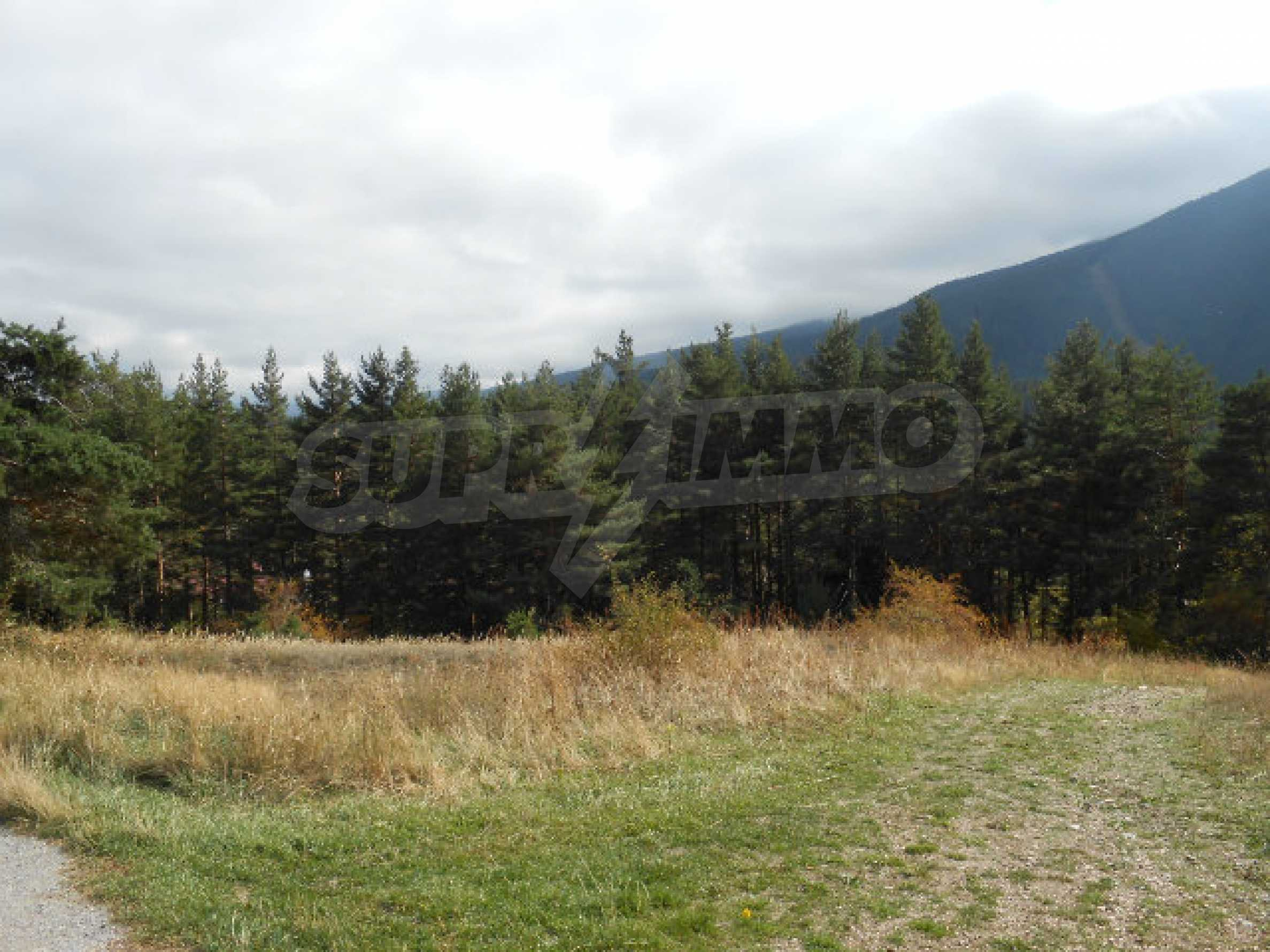 Regulated plot with project and potential in ski resort near Sapareva Banya 5