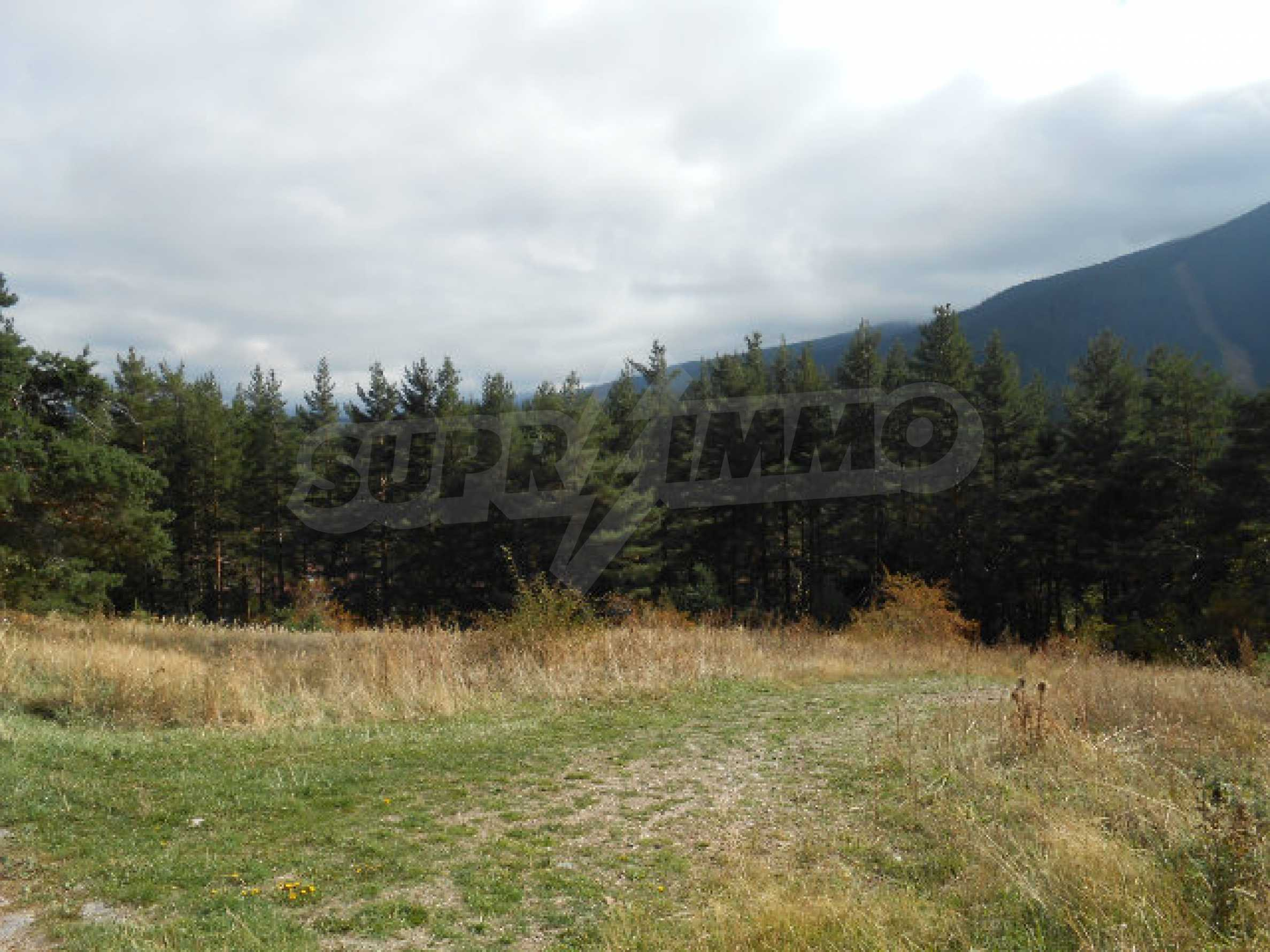 Regulated plot with project and potential in ski resort near Sapareva Banya 6