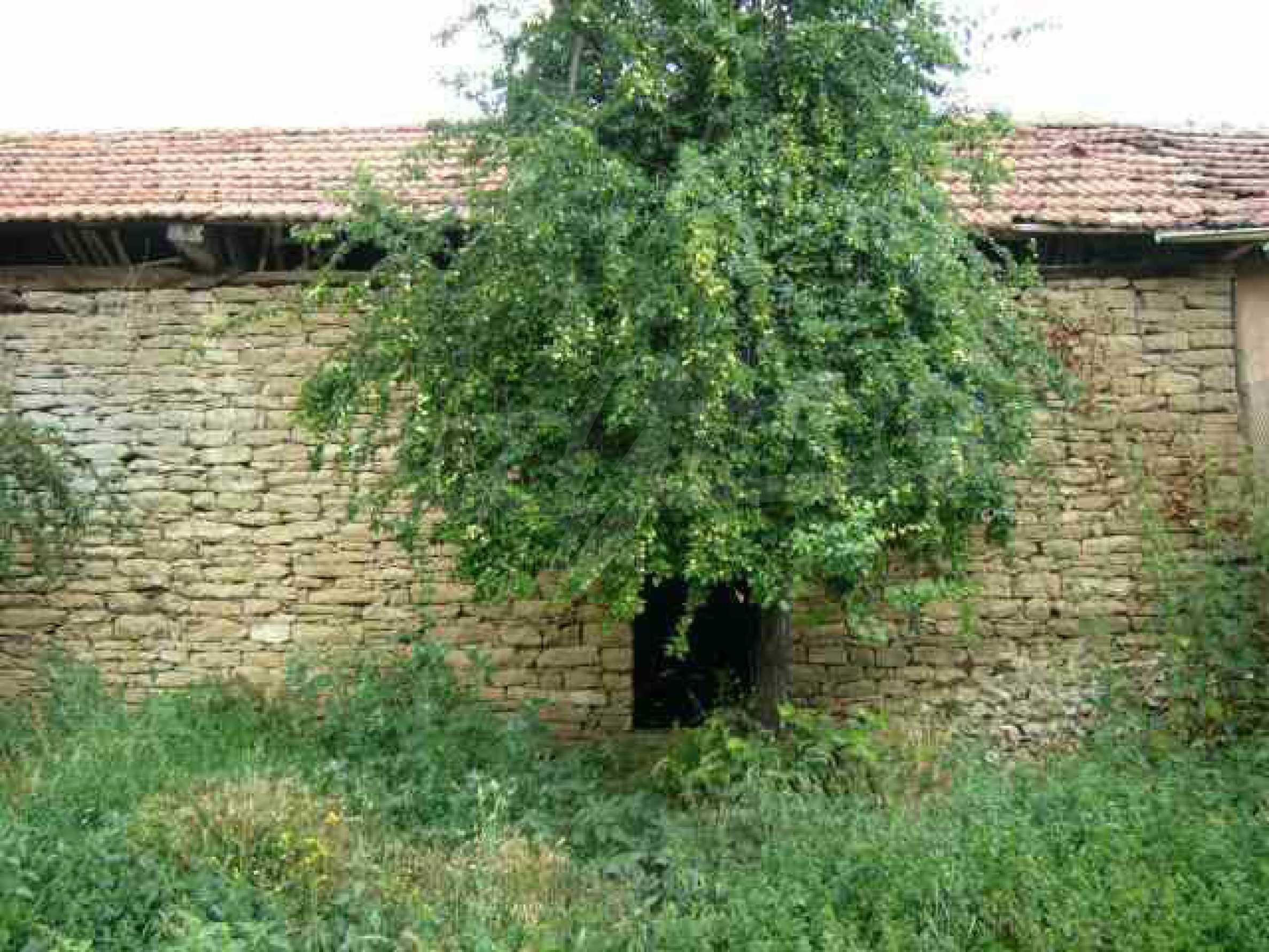 Einstöckiges Haus in einer kleinen Stadt, nur 15 km von Pavlikeni entfernt 10