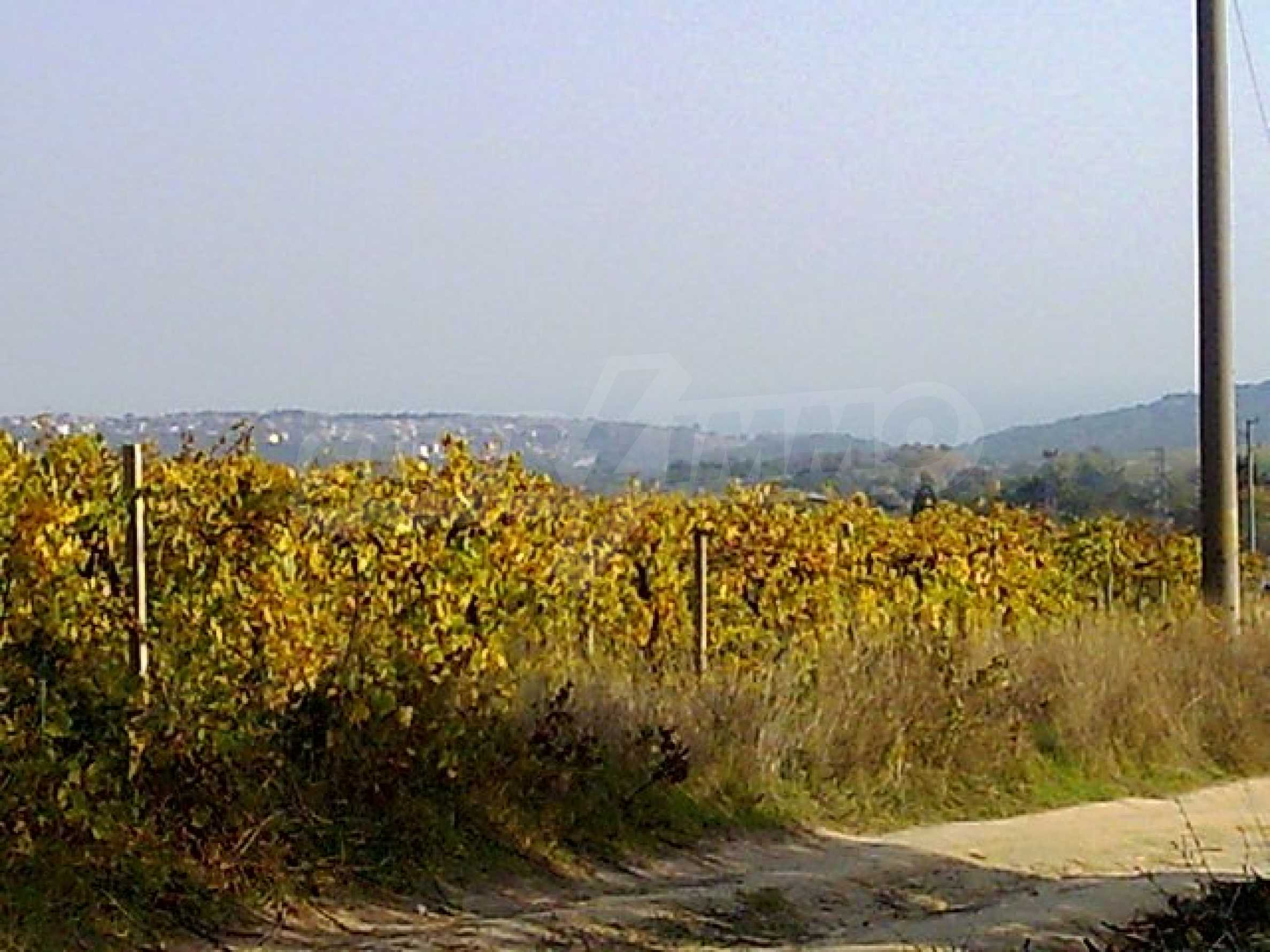 Agricultural land for sell near Varna 3