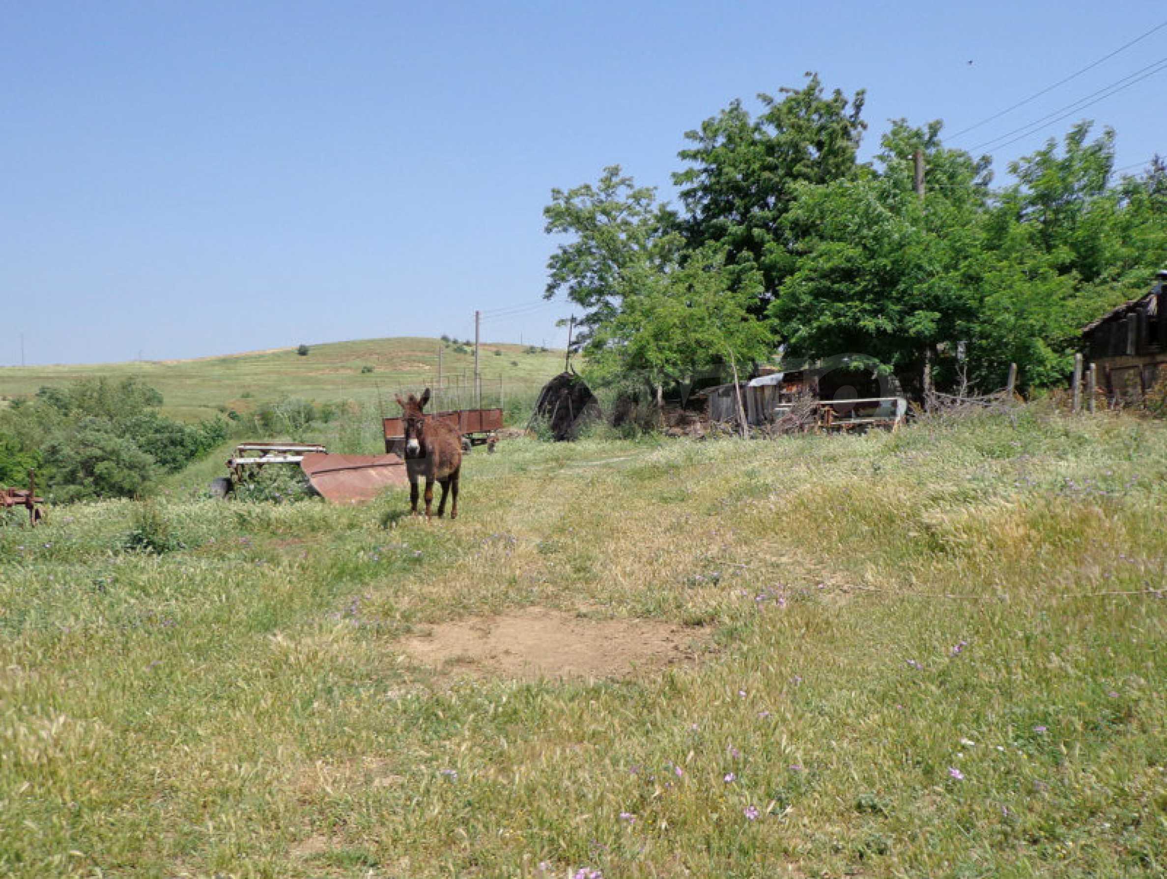 Grundstück zum Verkauf in einem malerischen Dorf 12 km von Sandanski entfernt 4