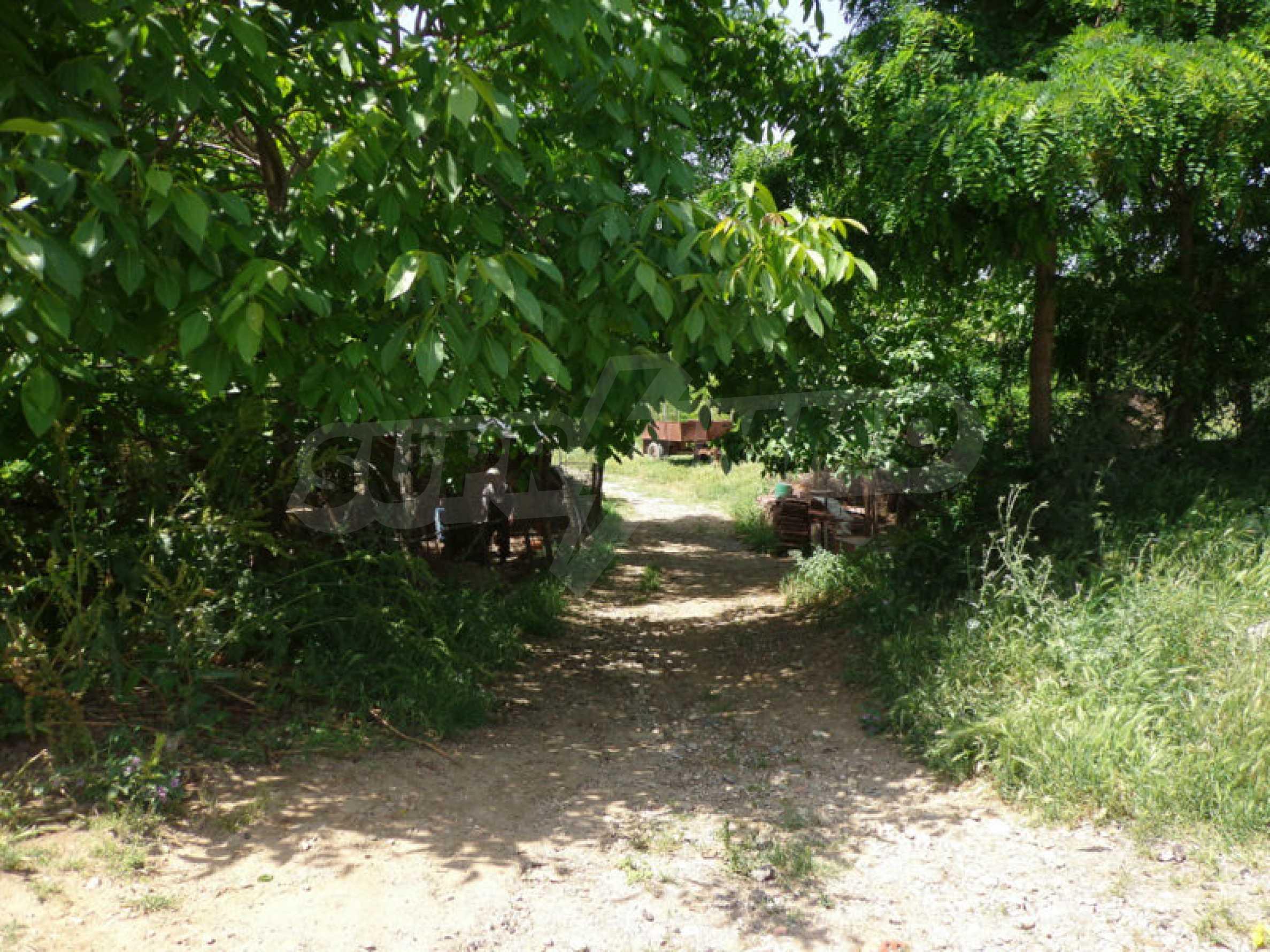 Grundstück zum Verkauf in einem malerischen Dorf 12 km von Sandanski entfernt 5