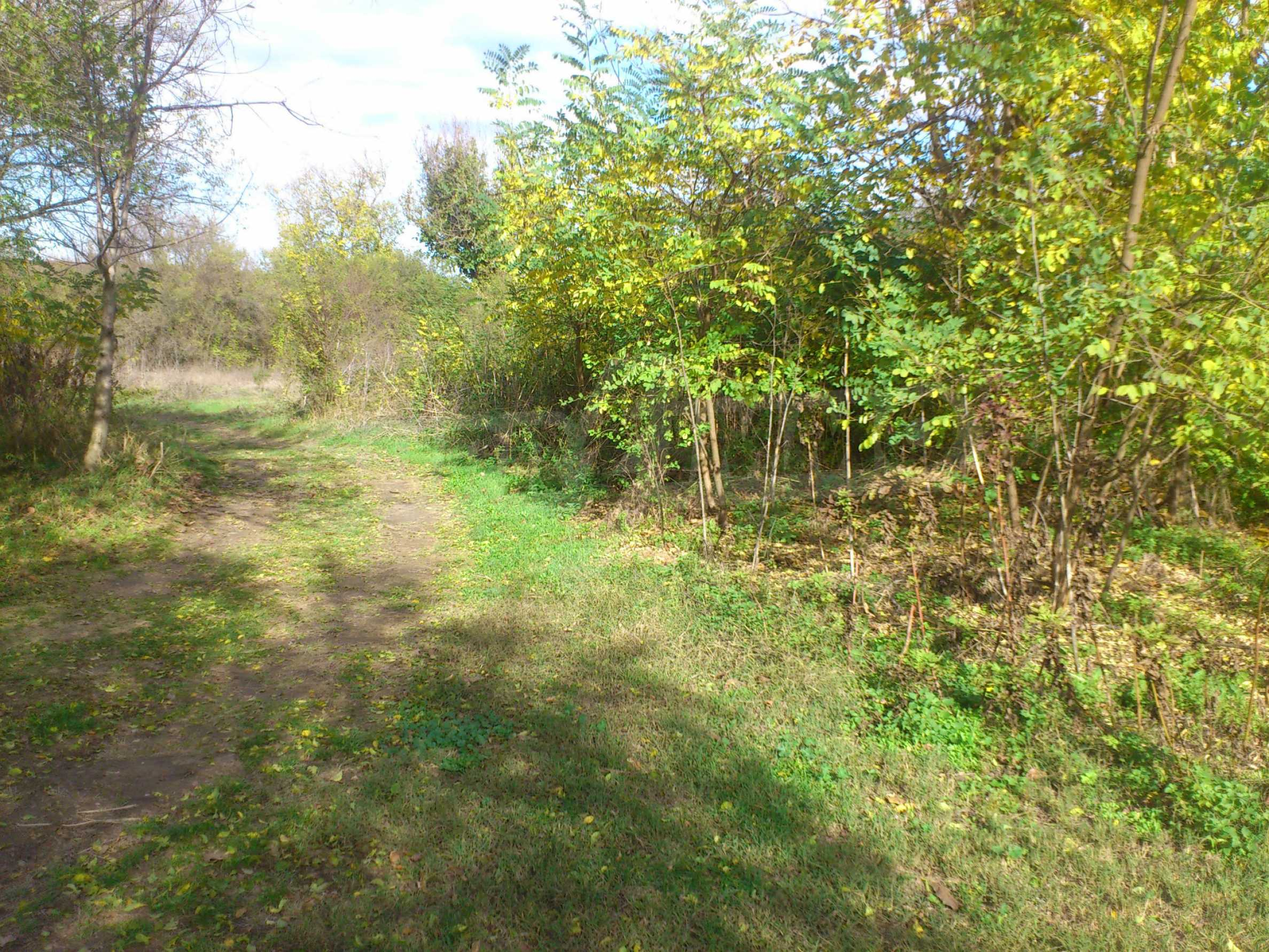 Regulated plot of land in a village just 17 km. from Veliko Tarnovo 2