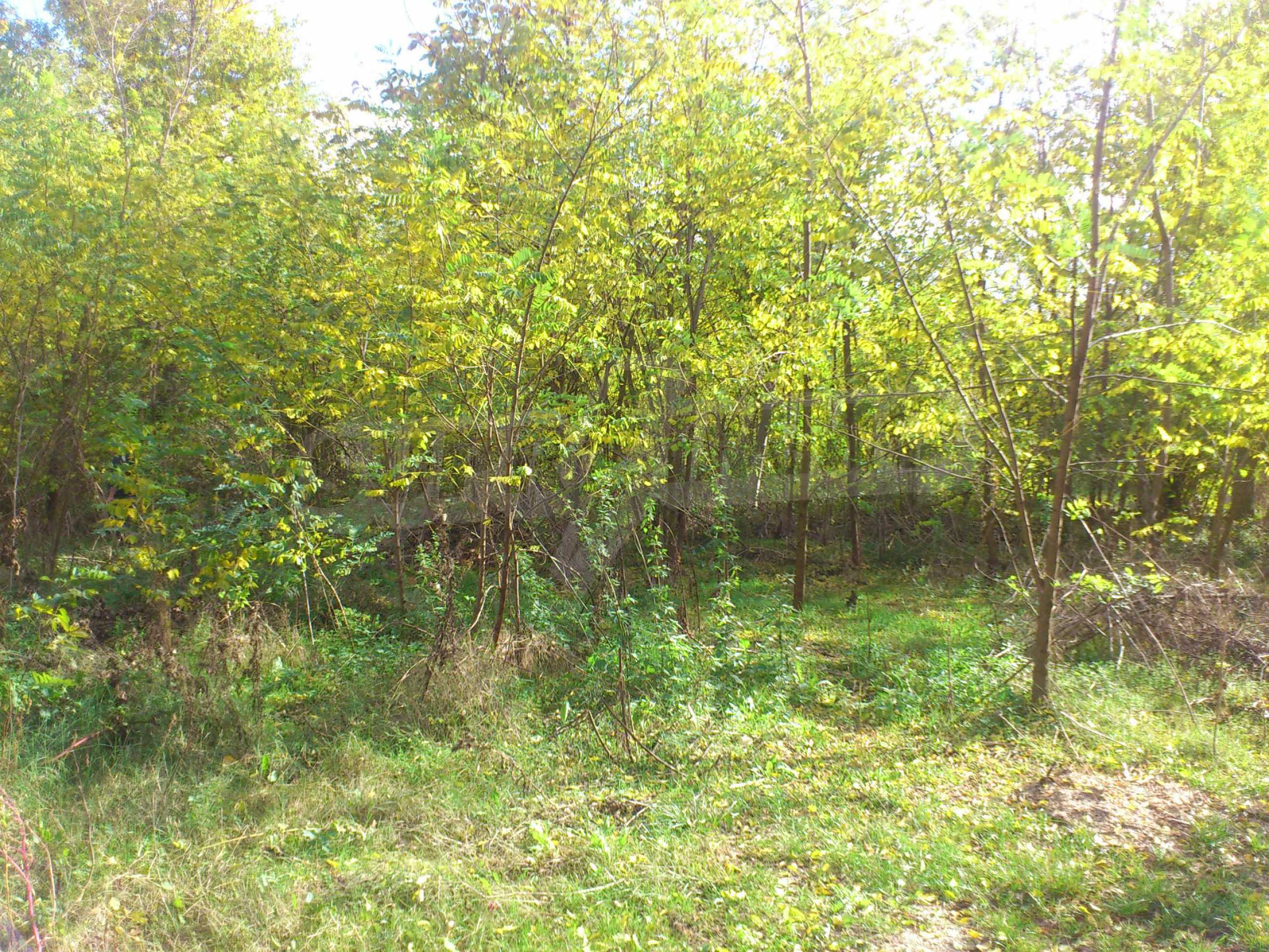 Regulated plot of land in a village just 17 km. from Veliko Tarnovo 3