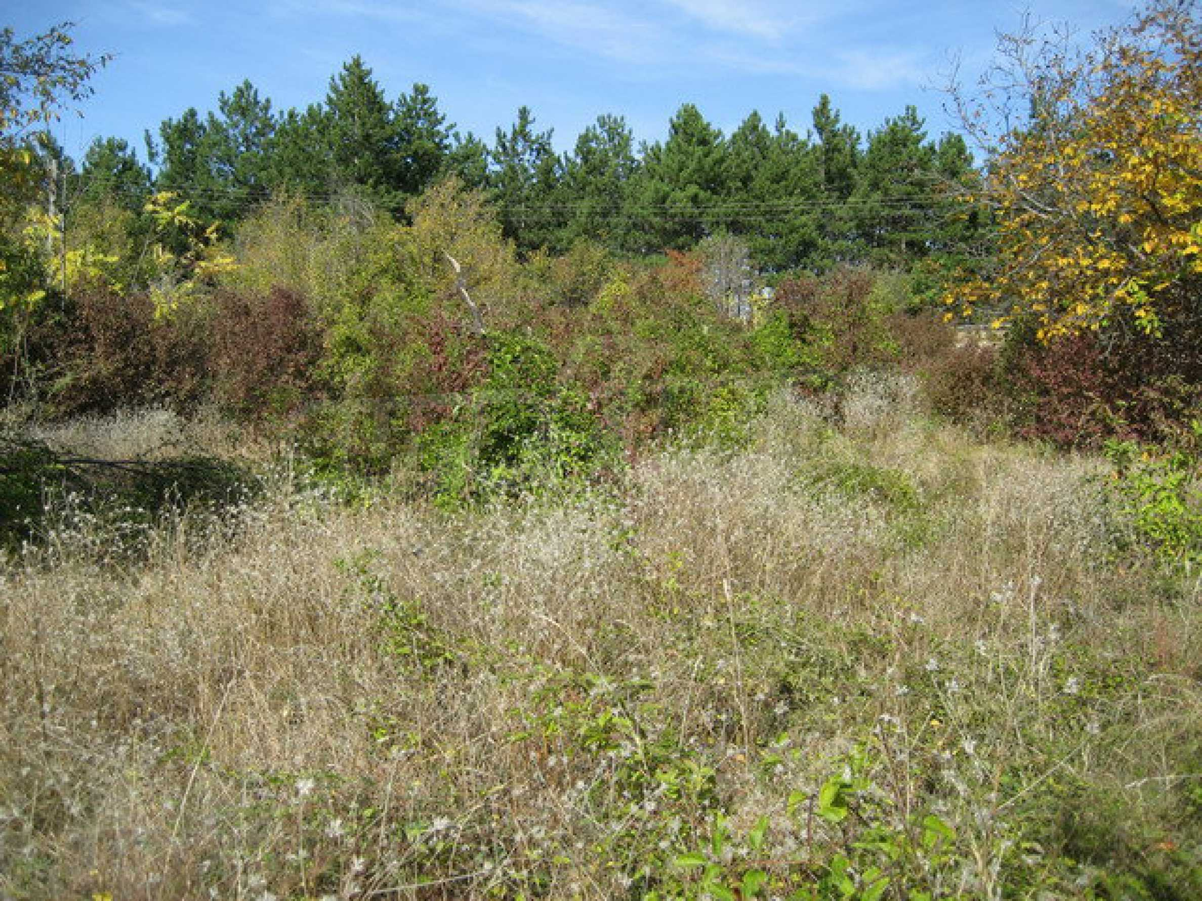 Plots of land in the highest part of the Arbanassi village 7