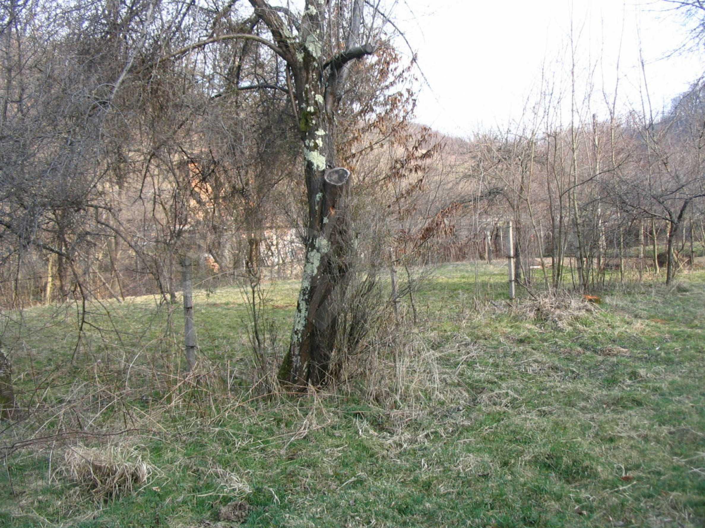 Großes Grundstück an einem Fluss 7