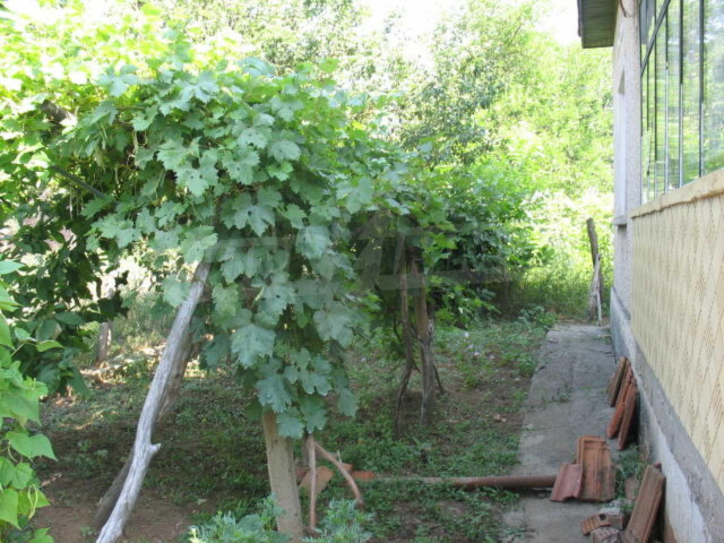 Дом вблизи г. Видин 13