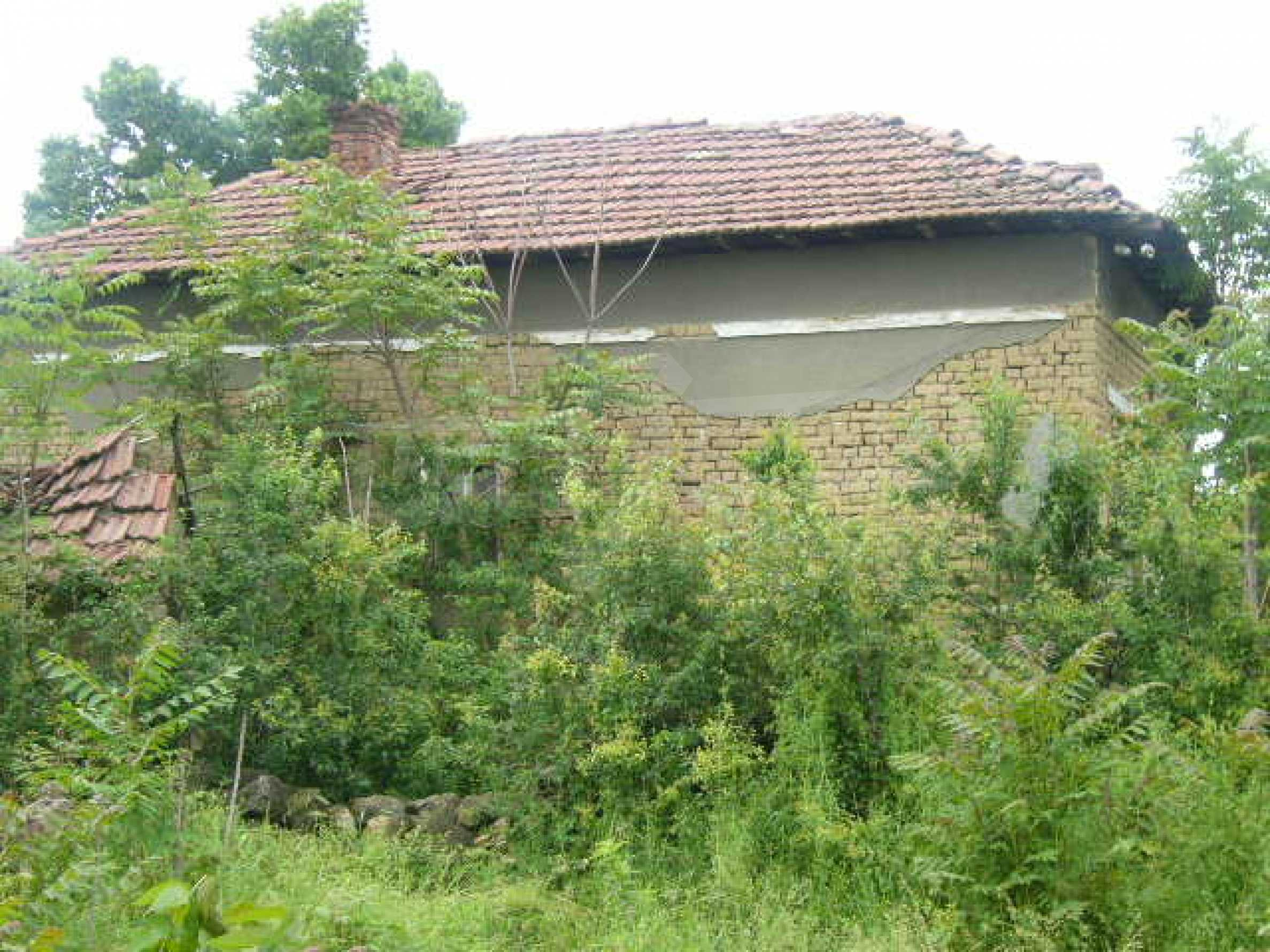Rural house with yard 5 min drive from Lovech 12