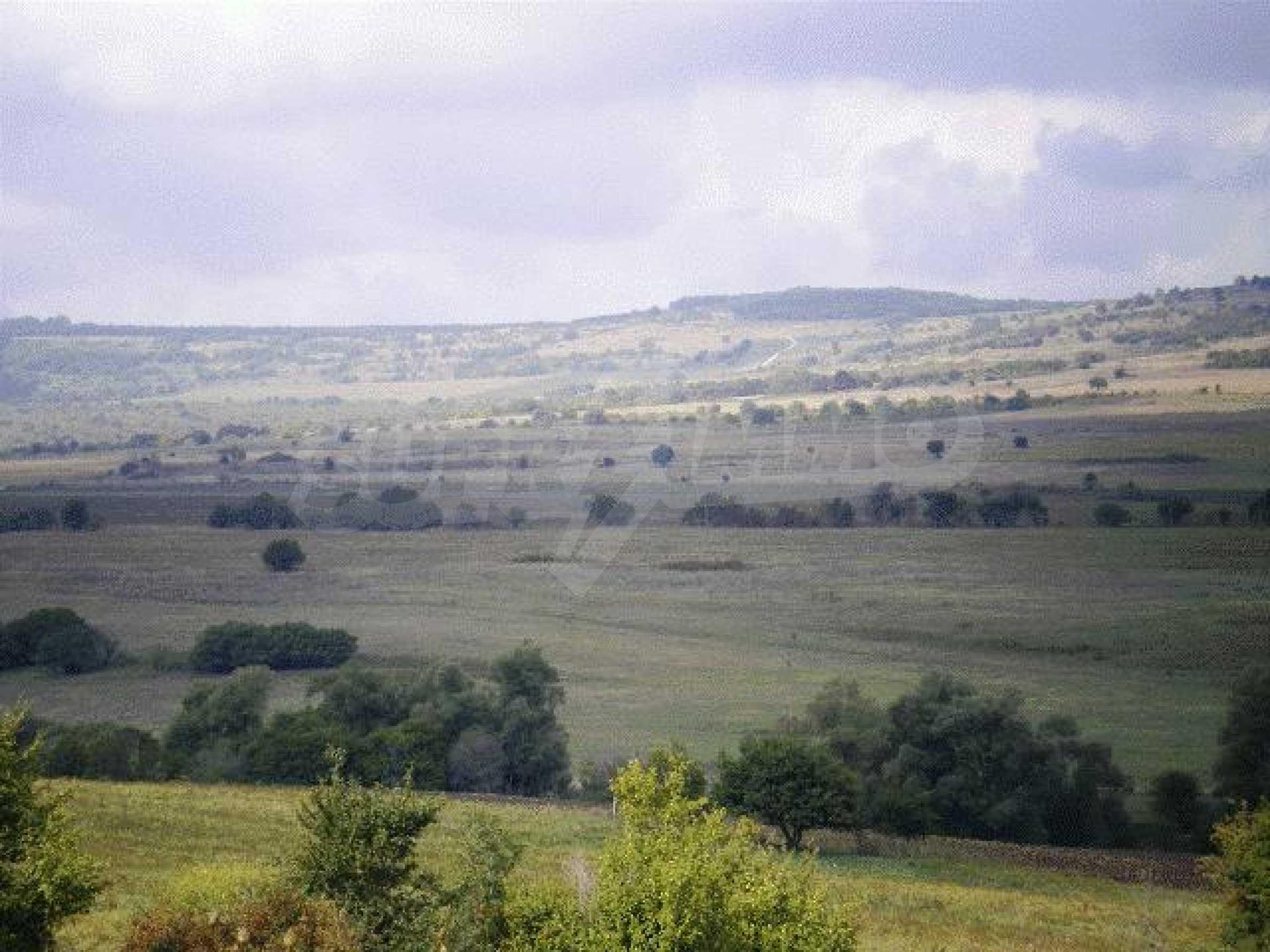 A vast plot of land near the sea!  7