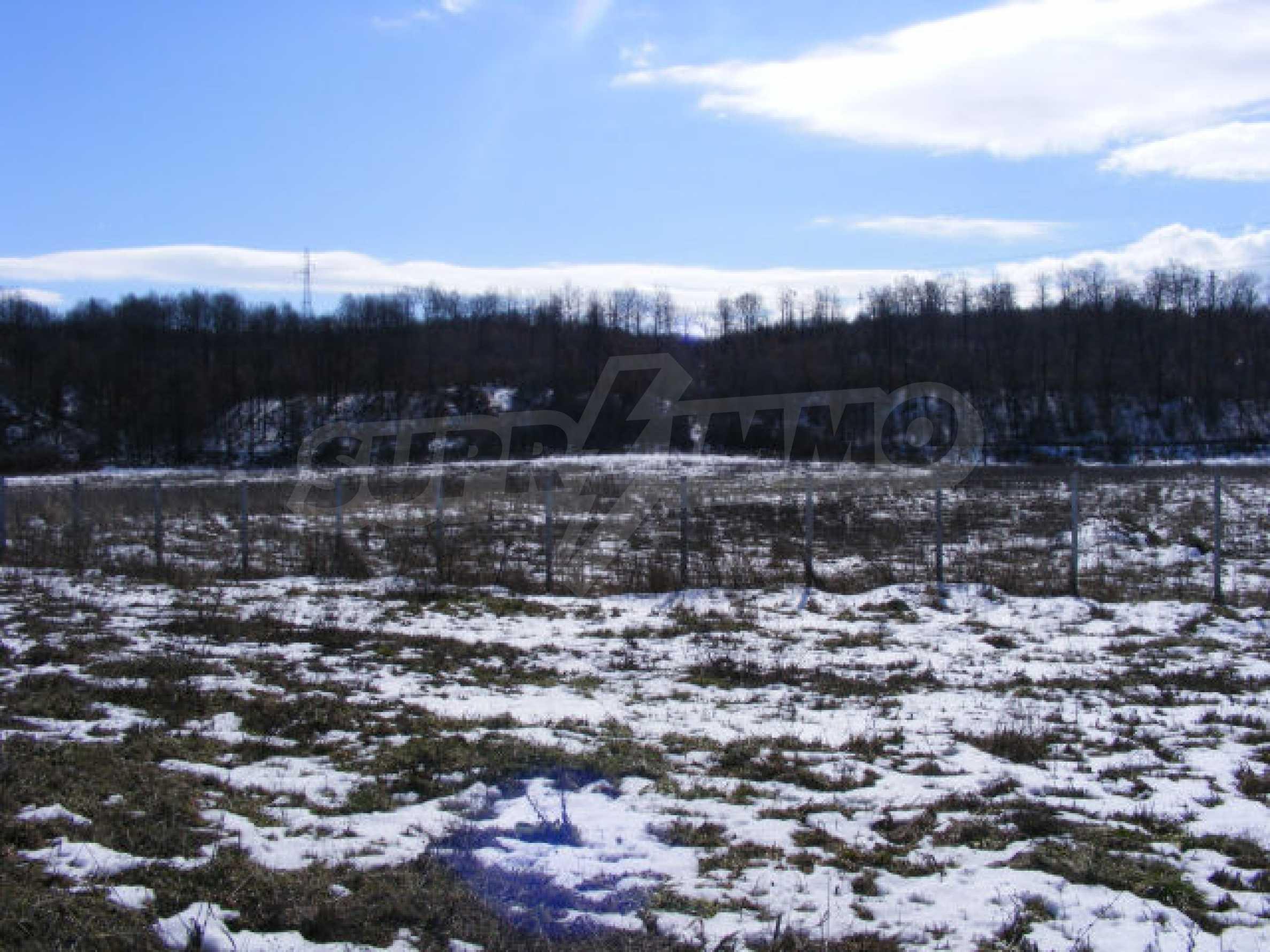 Сельскохозяйственная земля вблизи г. Монтана