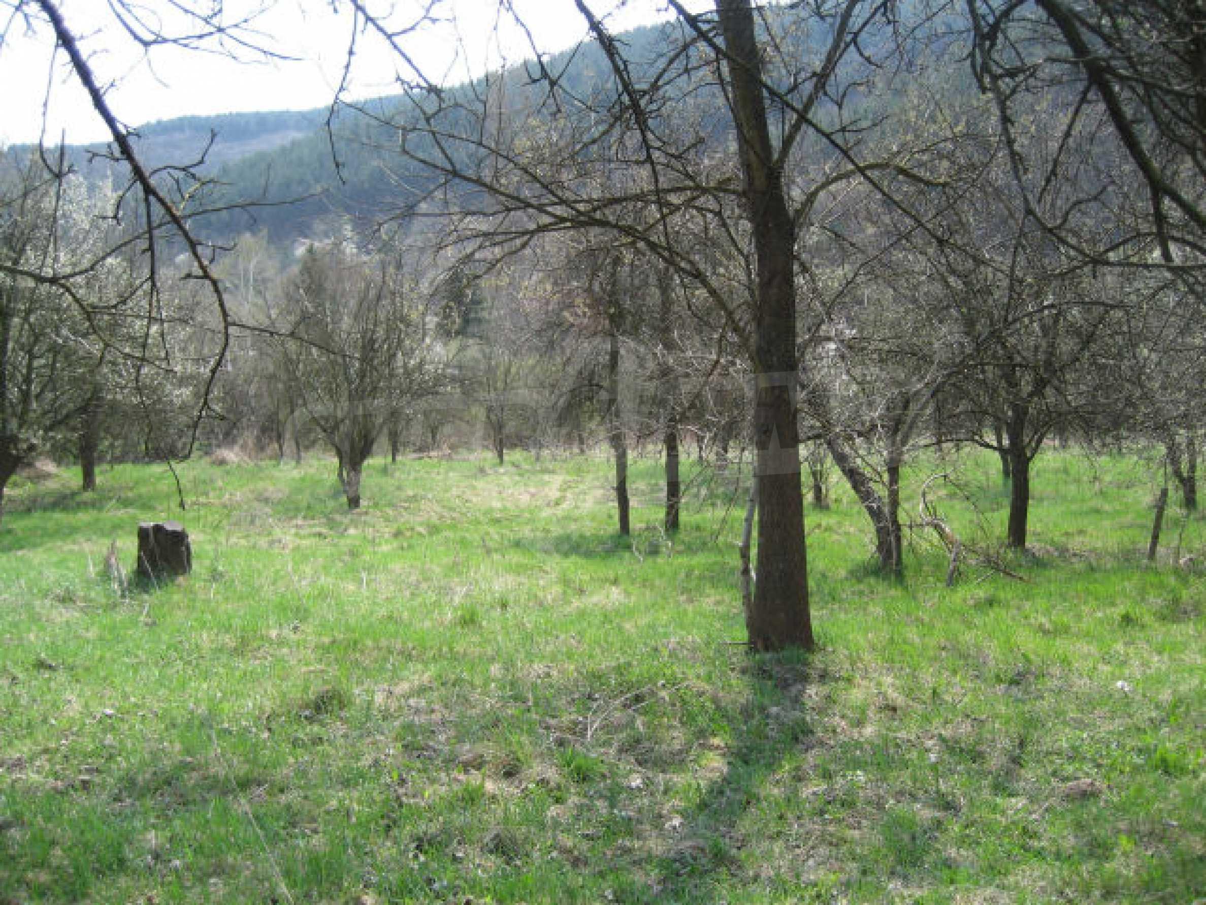 Сельскохозяйственная земля вблизи г. София 3
