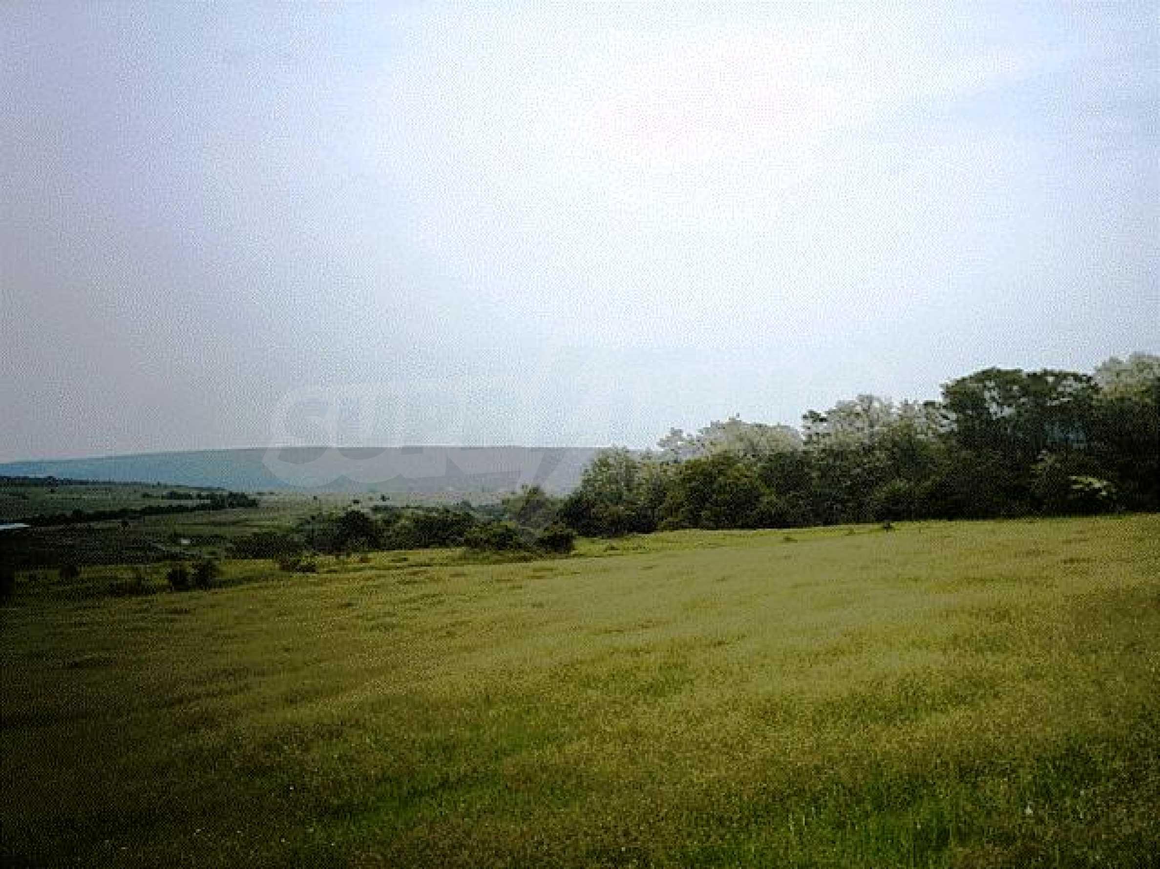 A vast plot of land near the sea!  9