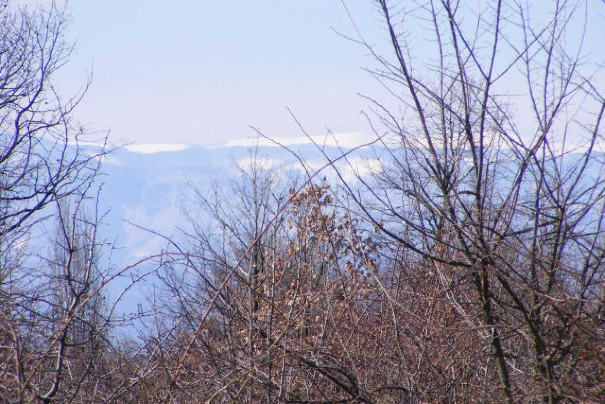 Сельскохозяйственная земля вблизи г. Монтана 6