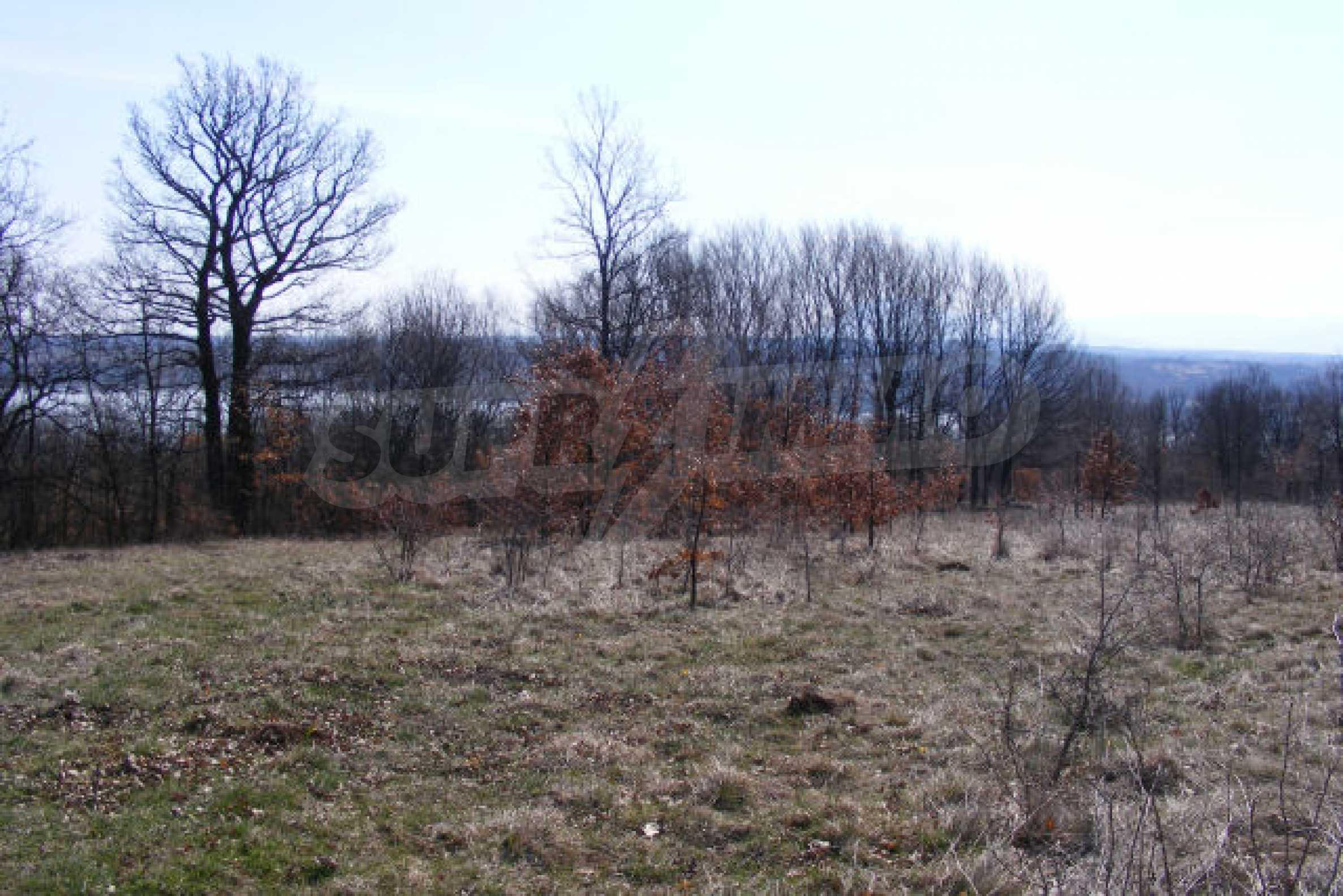 Сельскохозяйственная земля вблизи г. Монтана 4