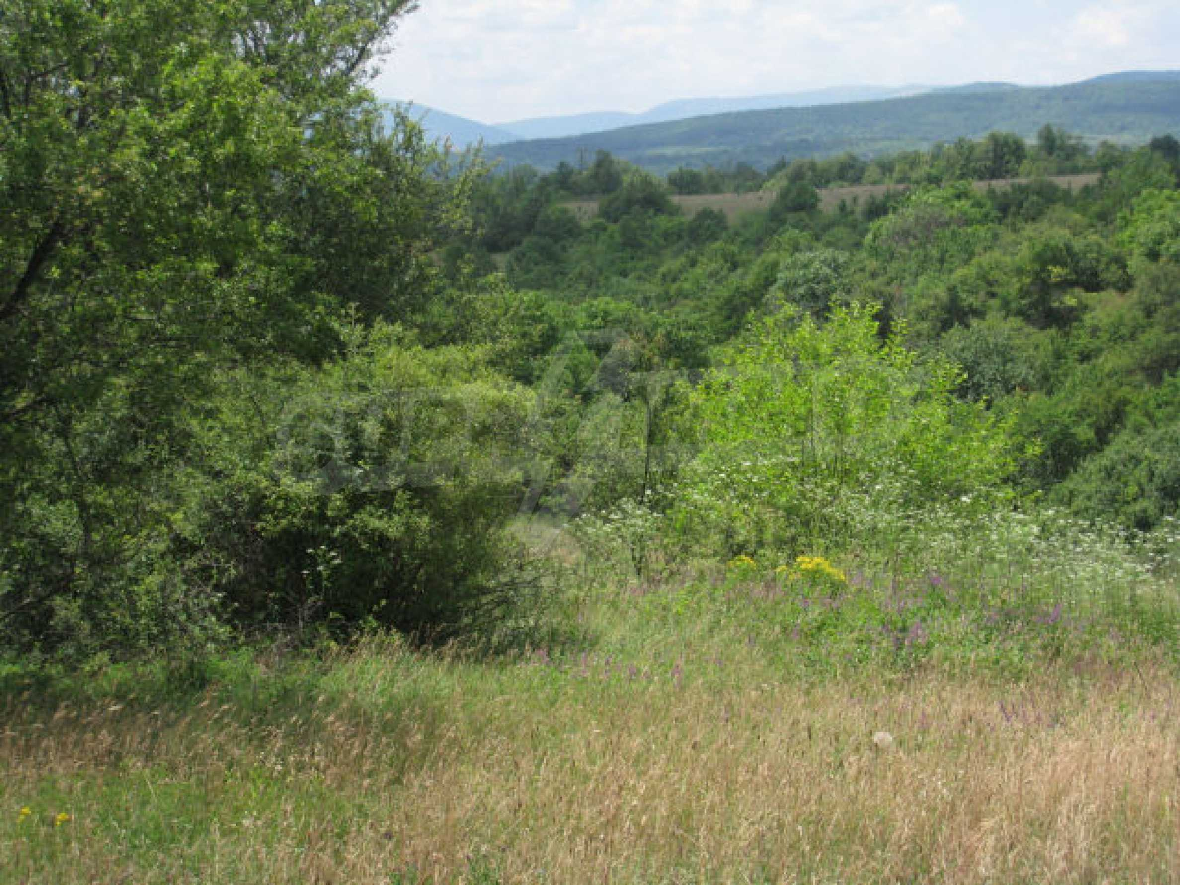 Сельскохозяйственная земля вблизи г. София 8