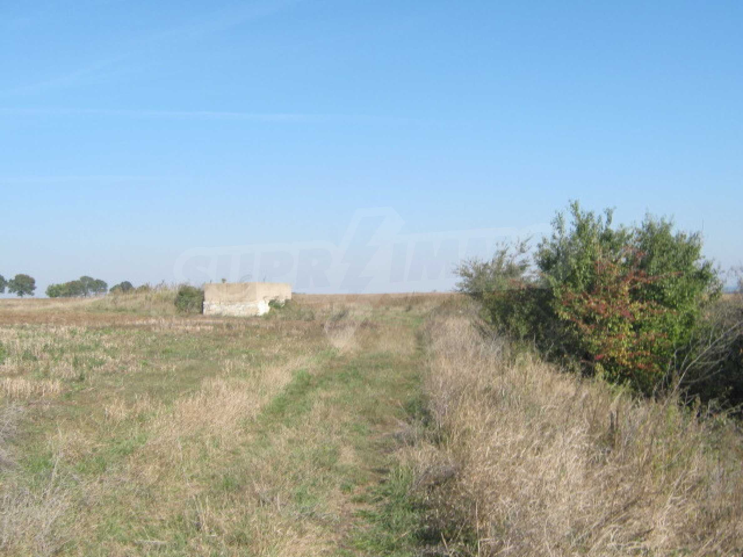 Сельскохозяйственная земля в г. Видин 2