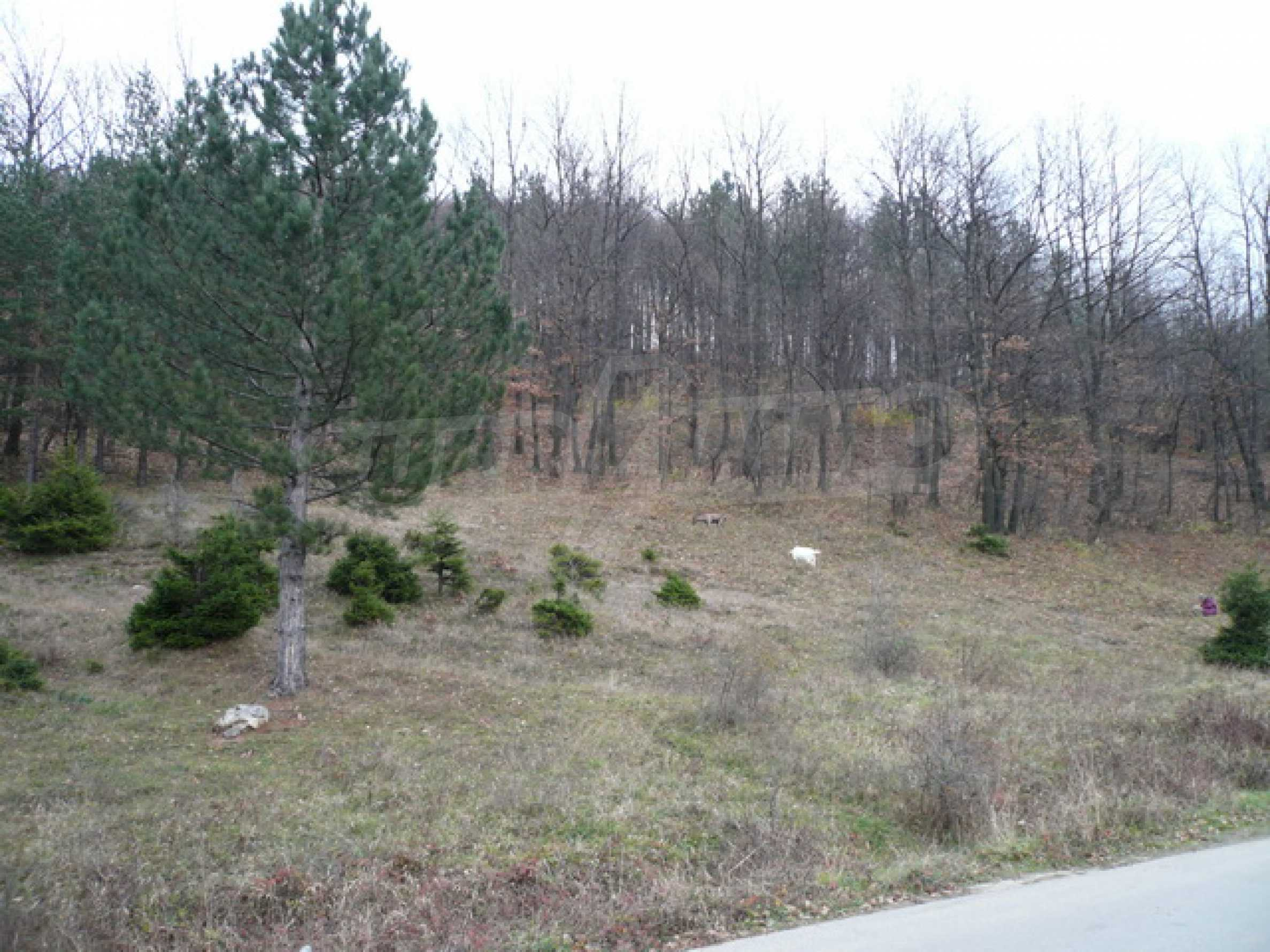 Plot of land for residential building in the town of Gabrovo 2