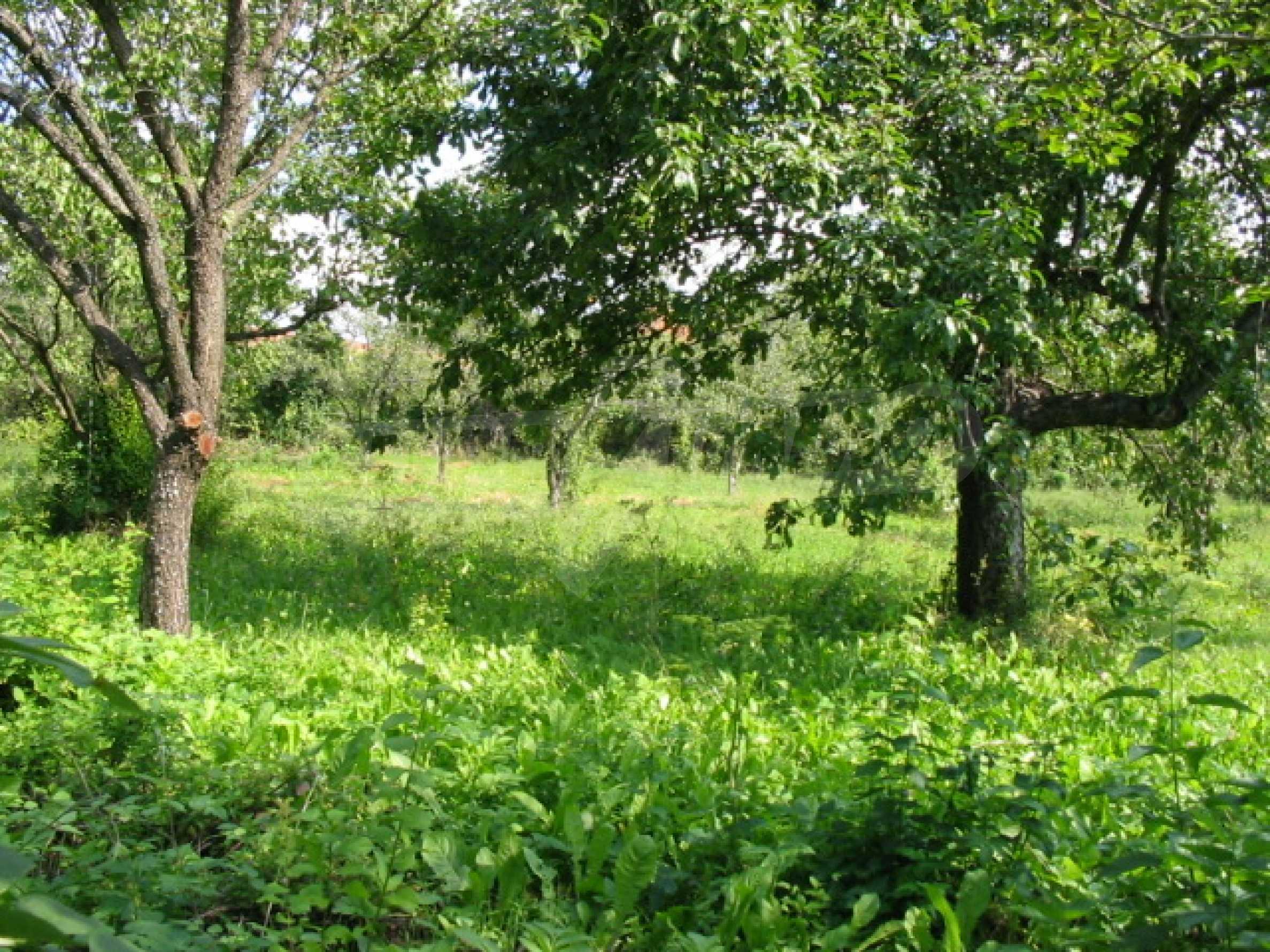 Продажа земли вблизи г. Велико Тырново 4