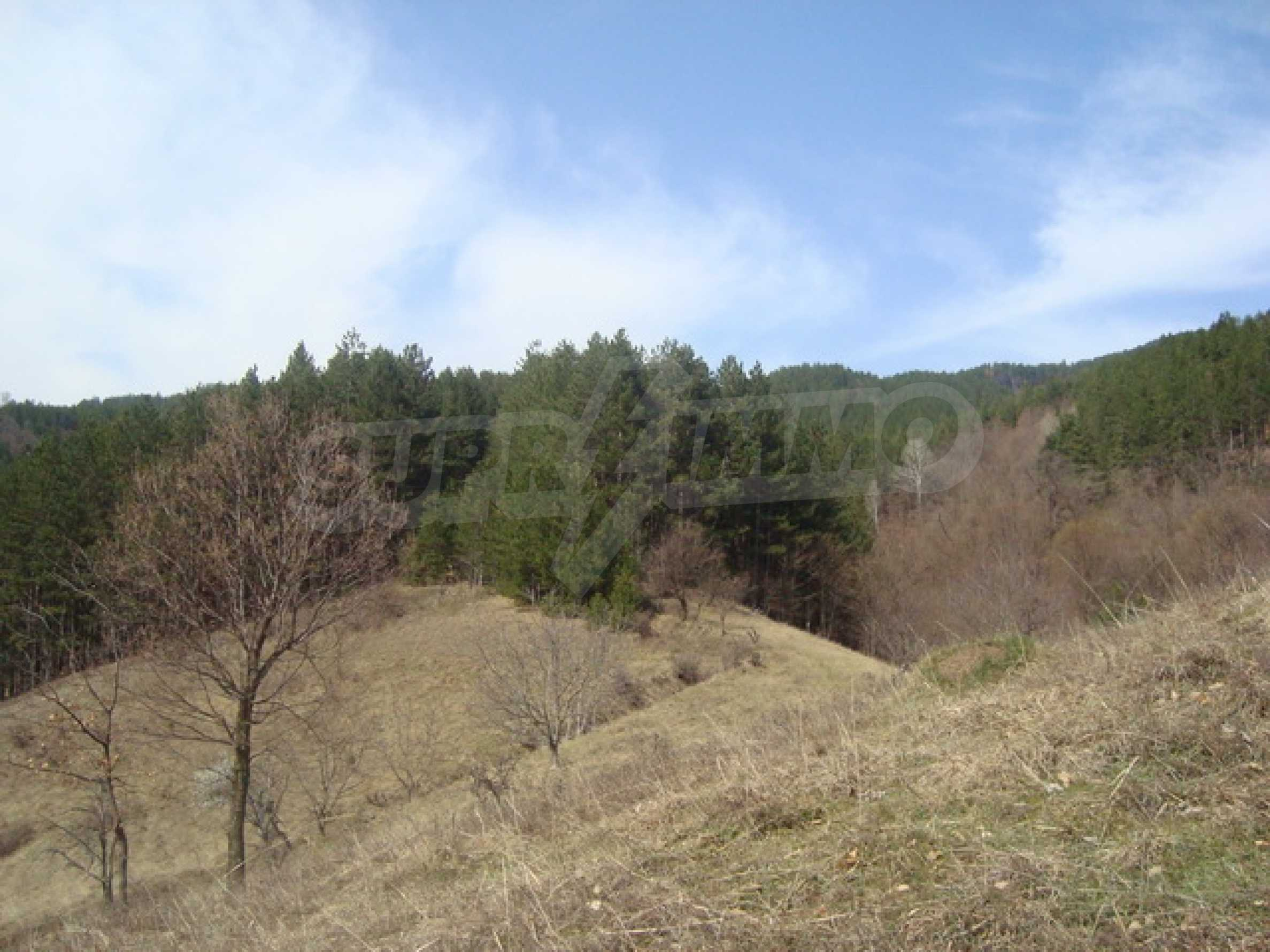 Plot of land for residential building in wonderful mountain area 12
