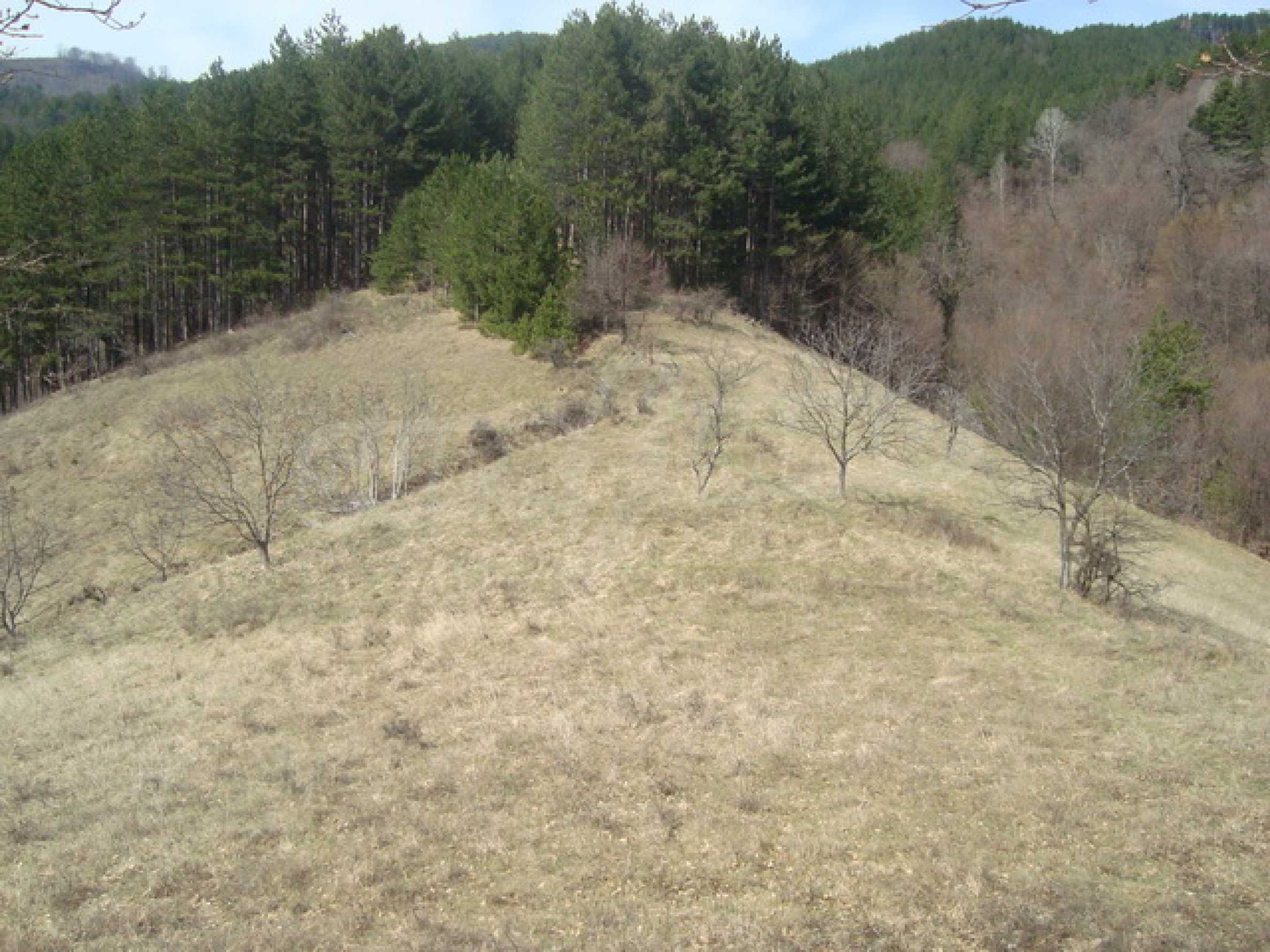 Plot of land for residential building in wonderful mountain area 6