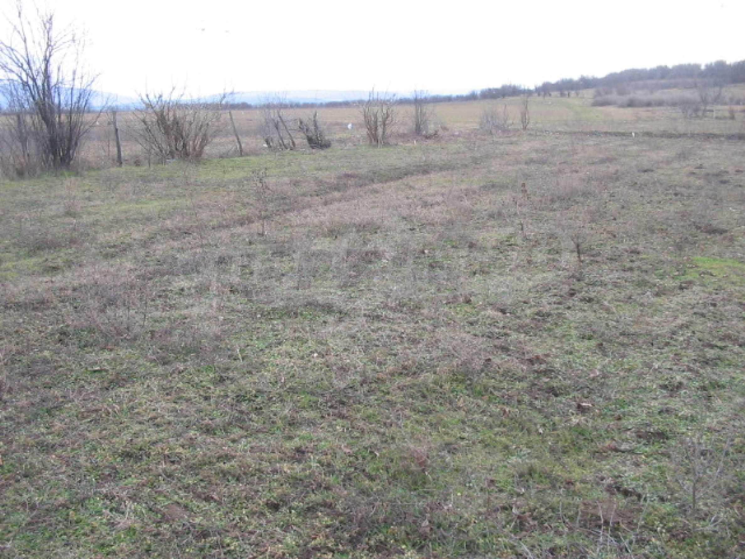 Продажа земли вблизи г. Велико Тырново 3