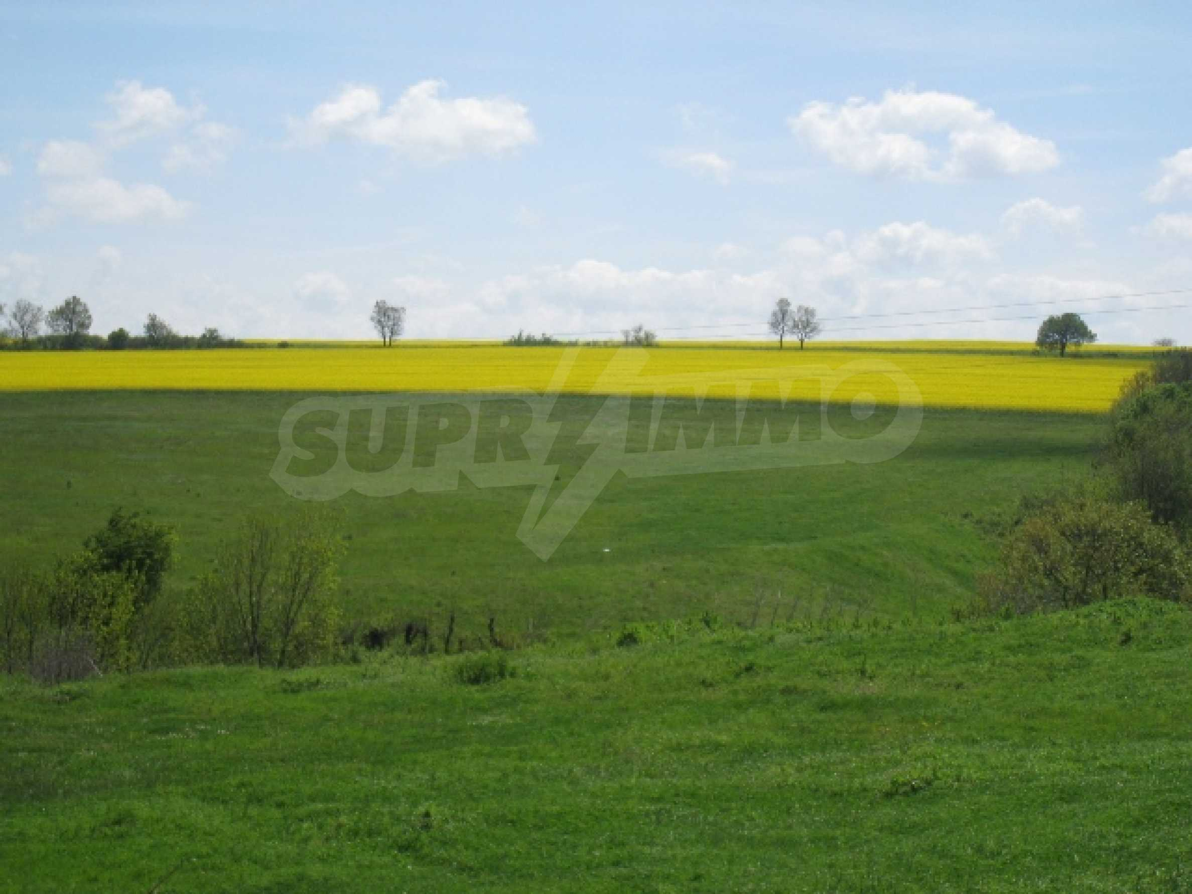 Land in area near Burgas 11