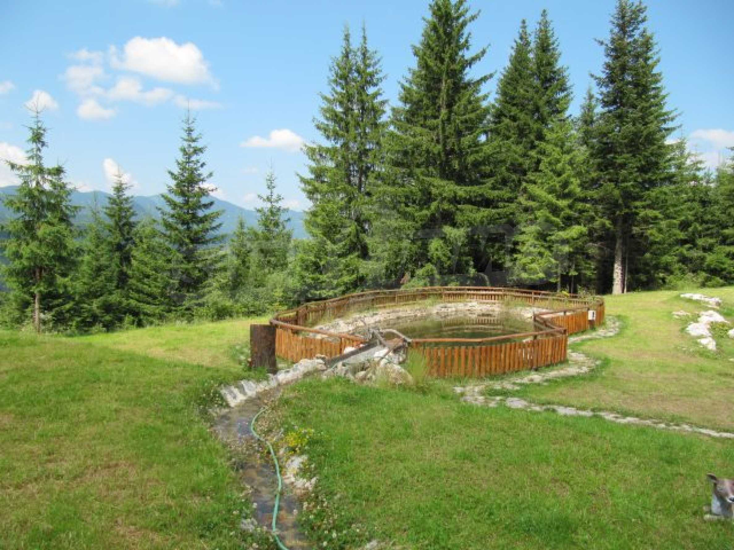 Contemporary hotel on panoramic location close to Pamporovo 26