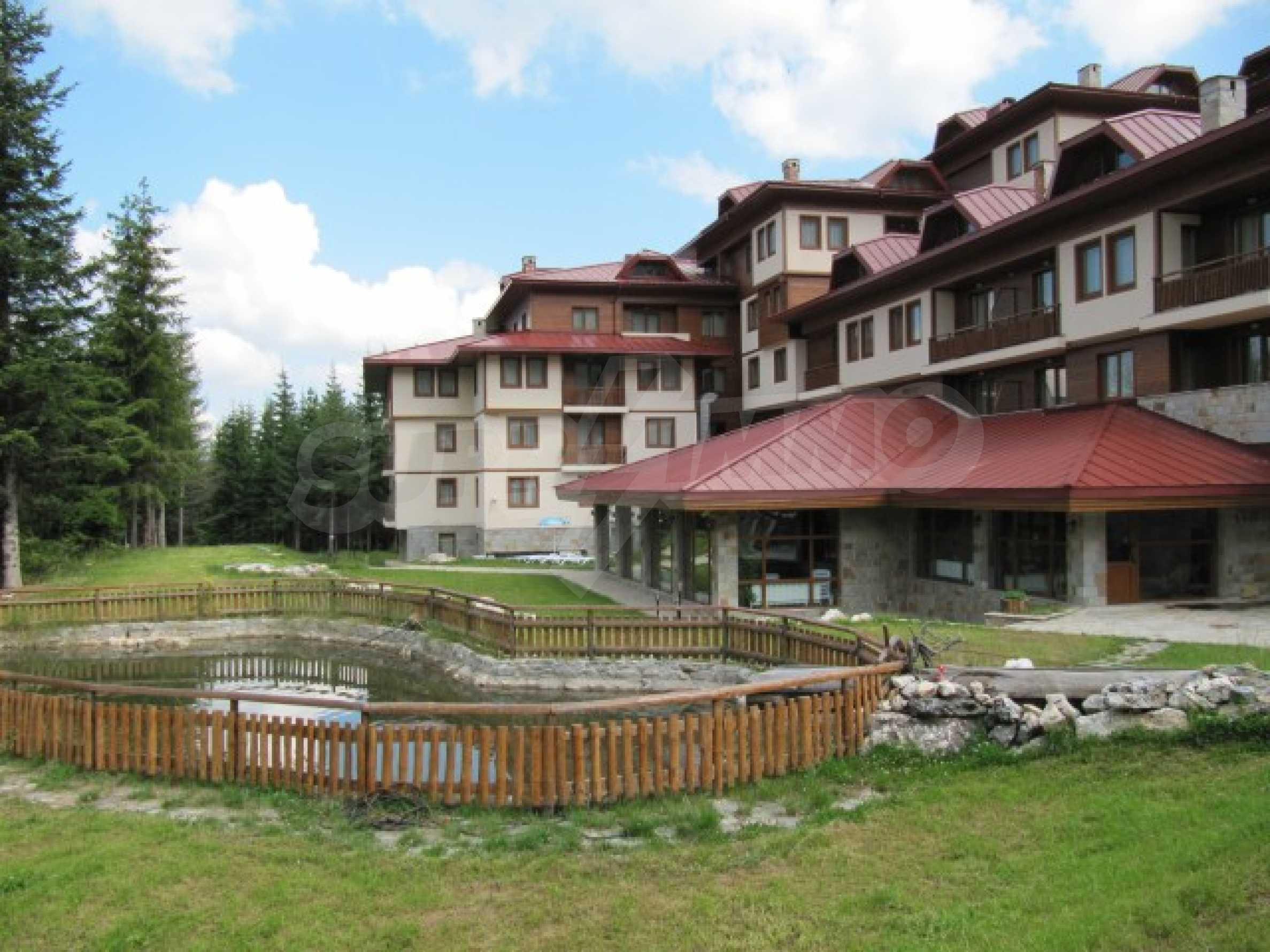 Contemporary hotel on panoramic location close to Pamporovo 2