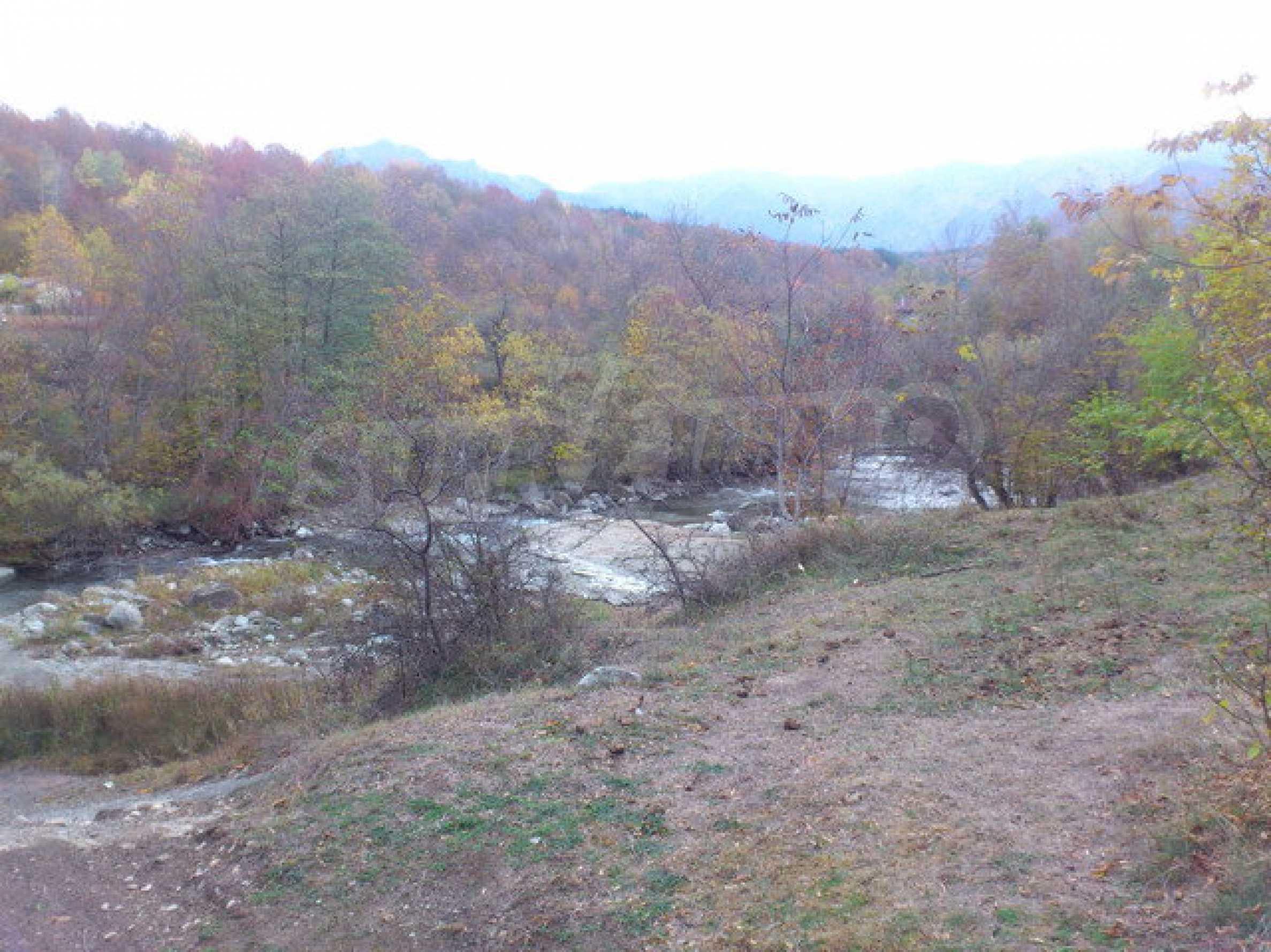 Земеделска земя и гора  14