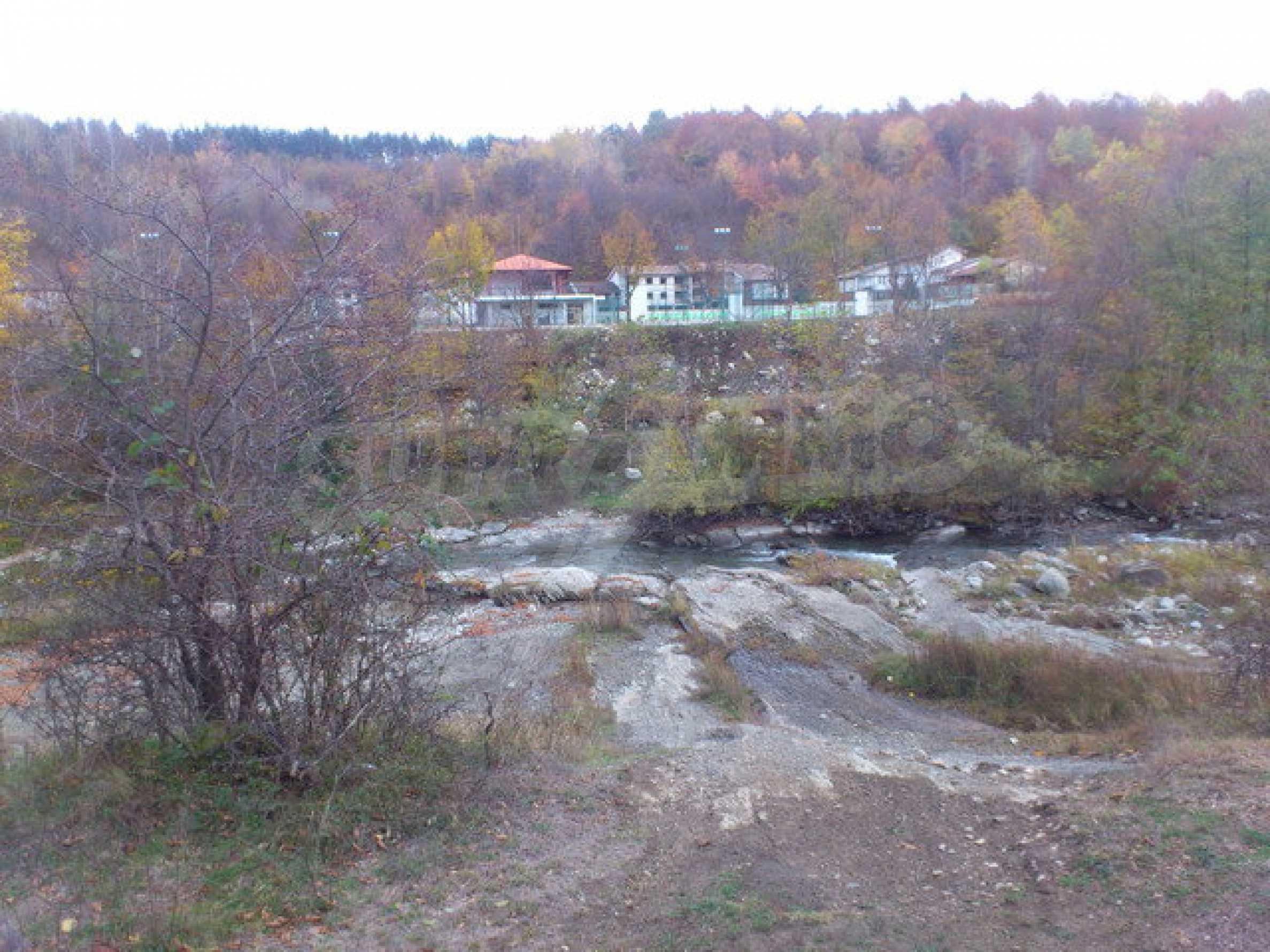 Ackerland und Wald 14