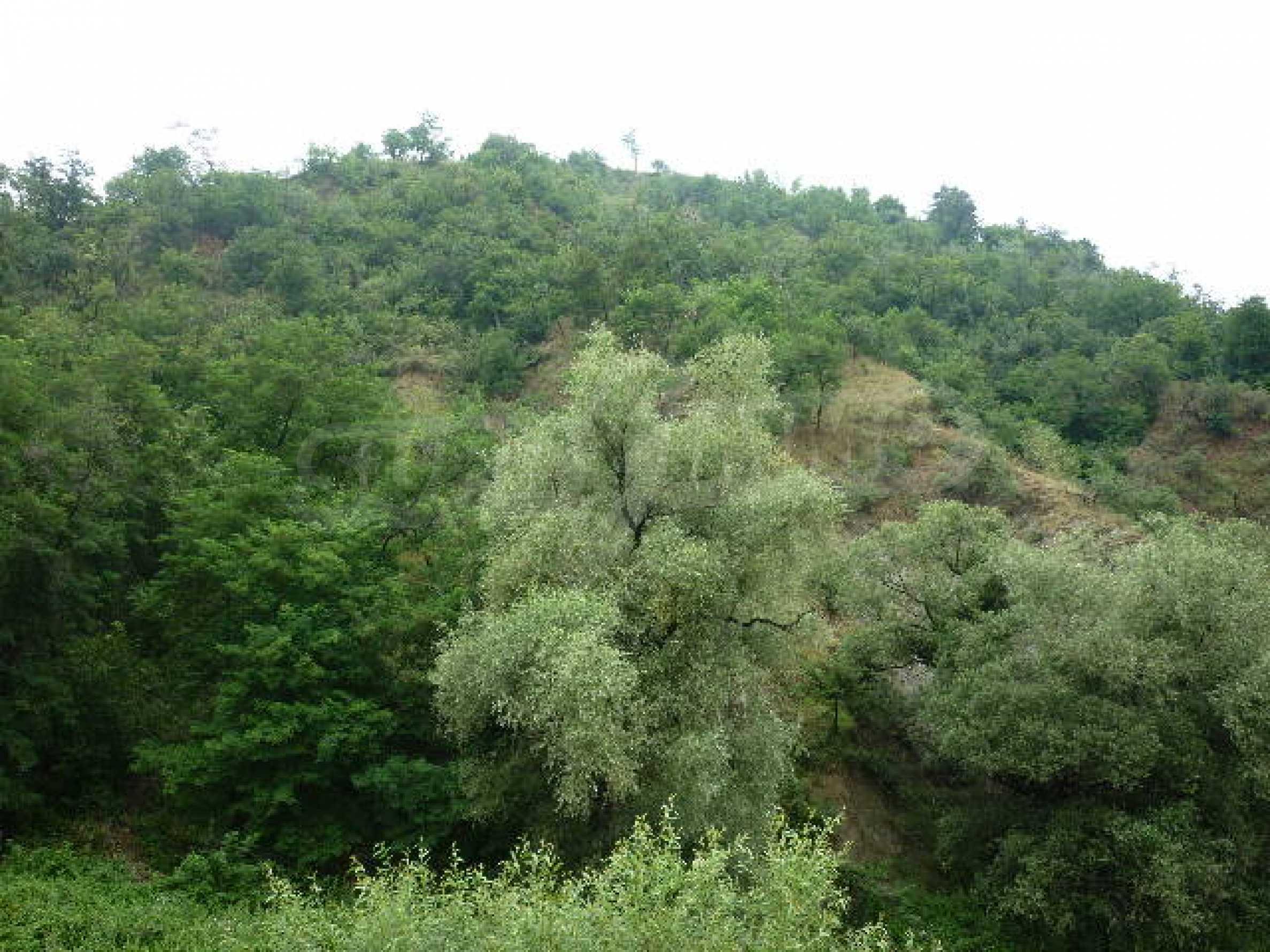 Продажа земли вблизи г. София 9