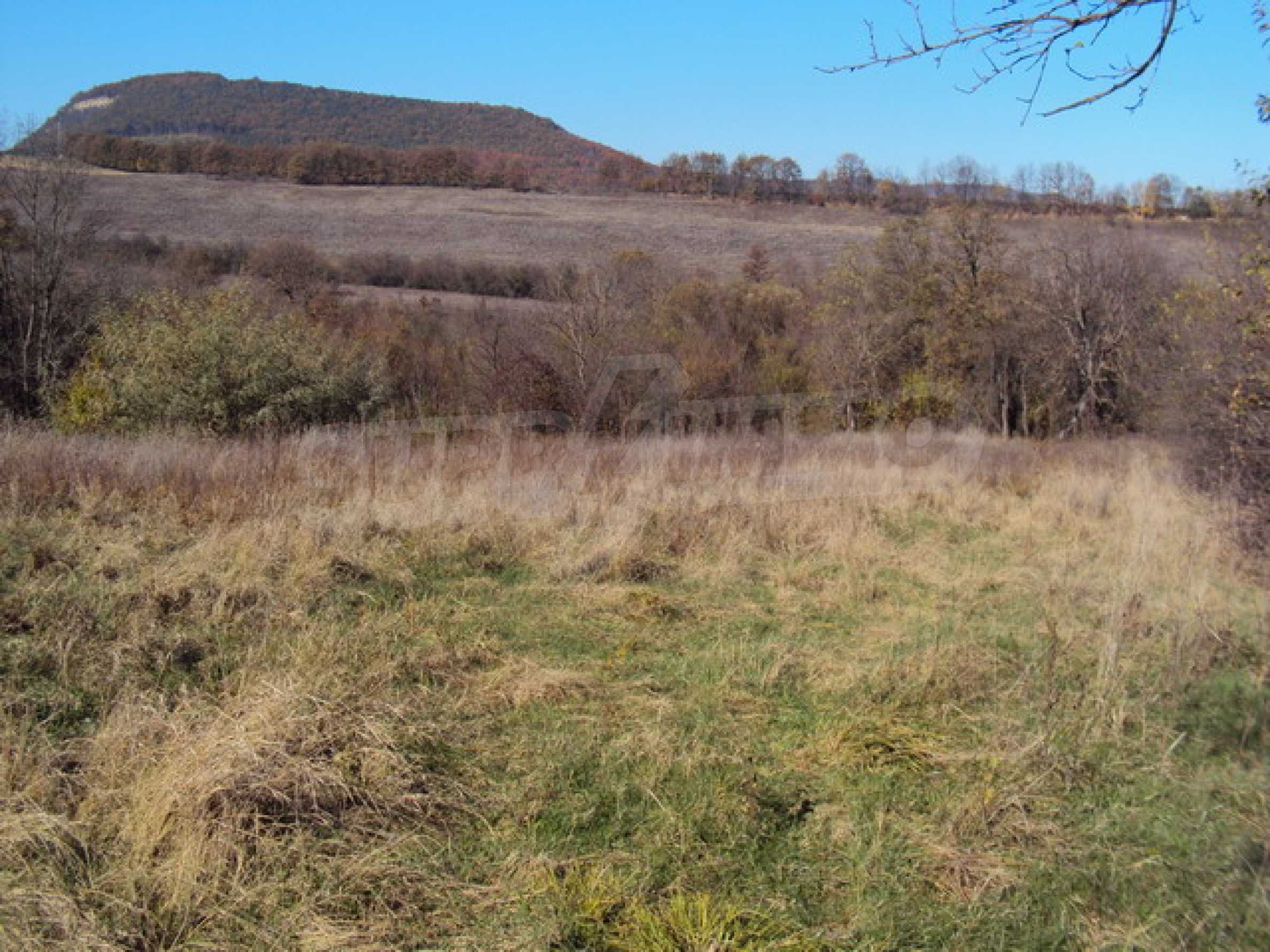 Regulated land for sale!