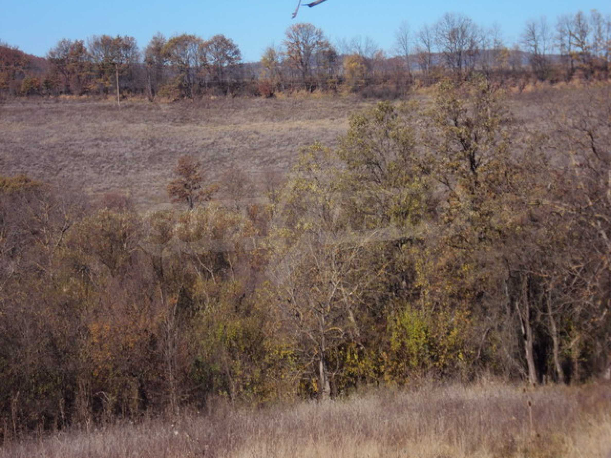 Regulated land for sale! 6