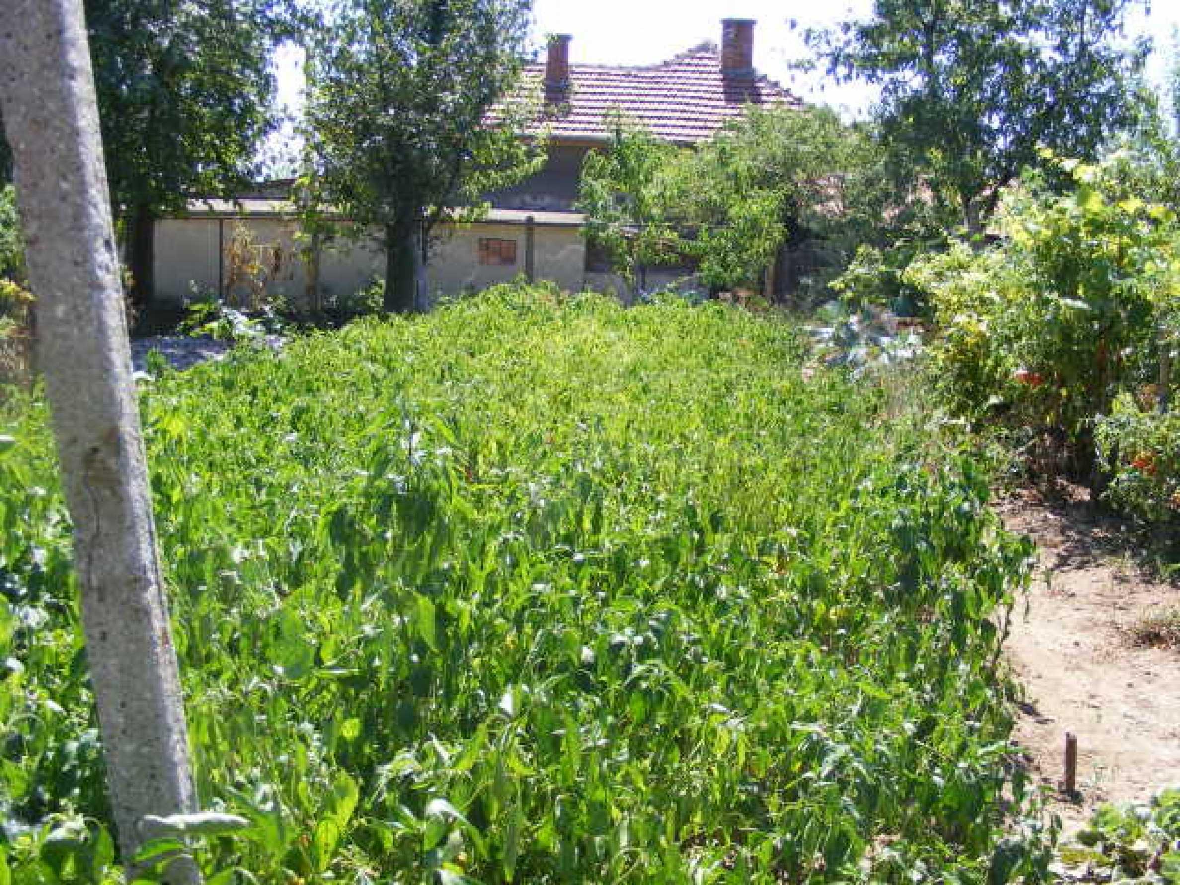 Schönes Haus mit einem großen Garten 16