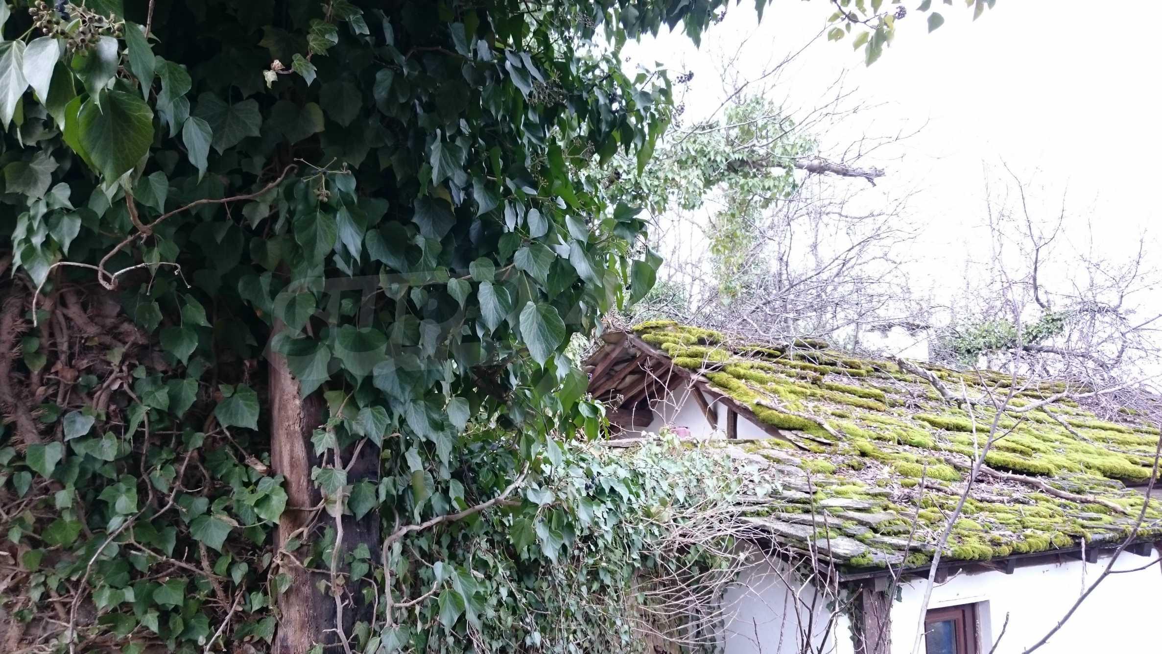 Традиционен имот в малко, китно село 42