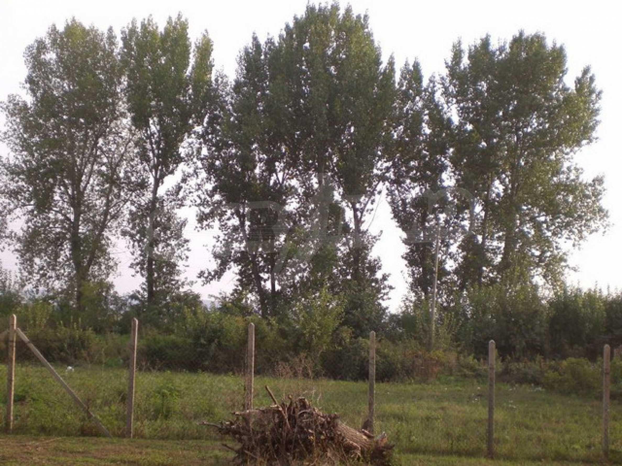продажа земли недалеко от Велико Тырново 2