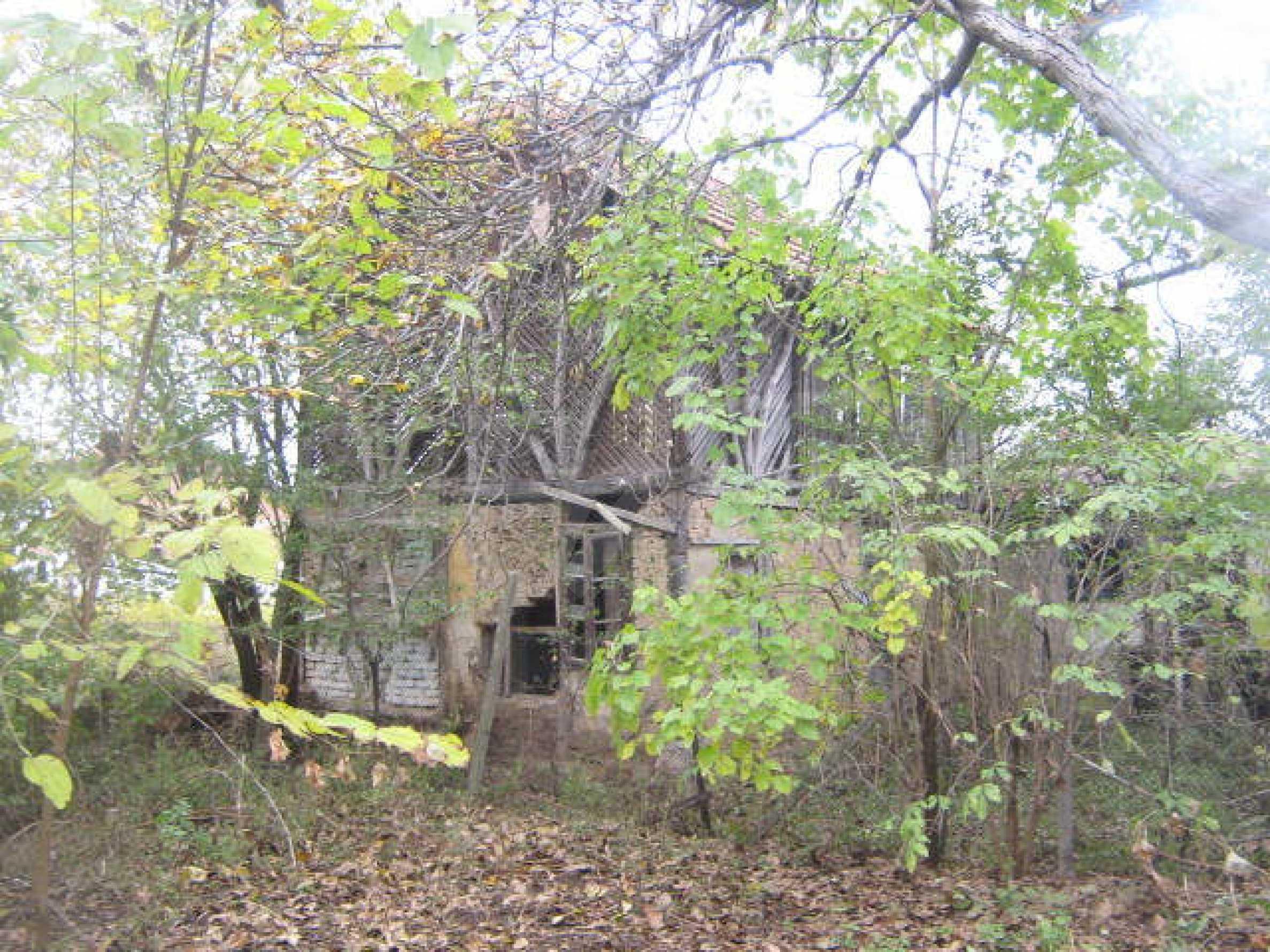 Дом вблизи г. Видин 8