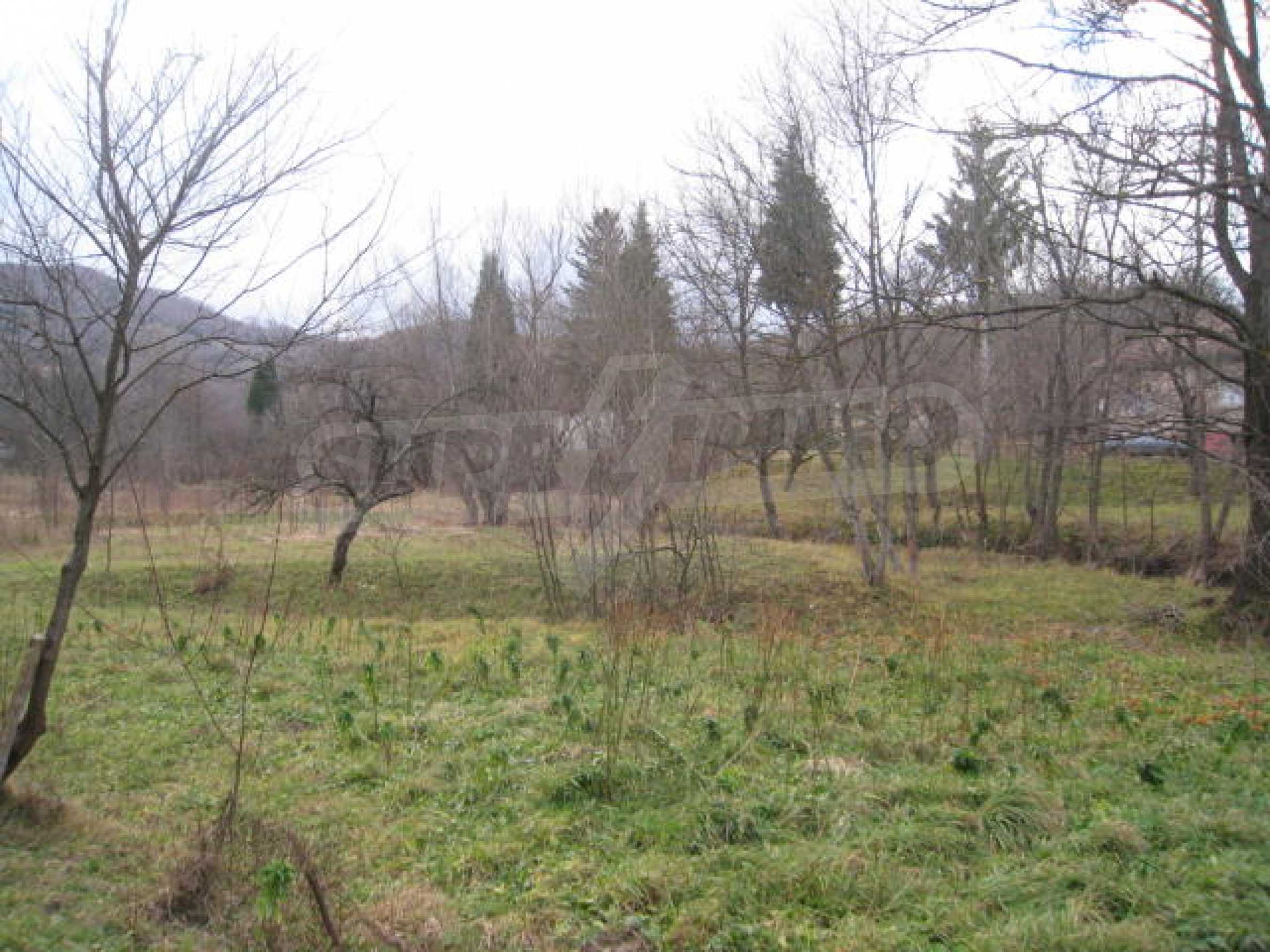 Large plot in regulation close to Klisura Monastery