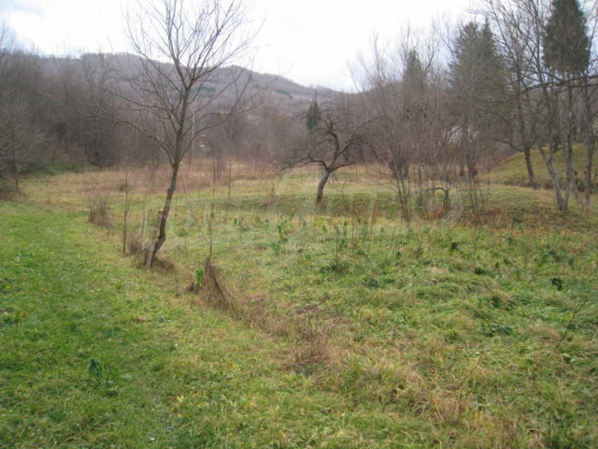 Large plot in regulation close to Klisura Monastery 2