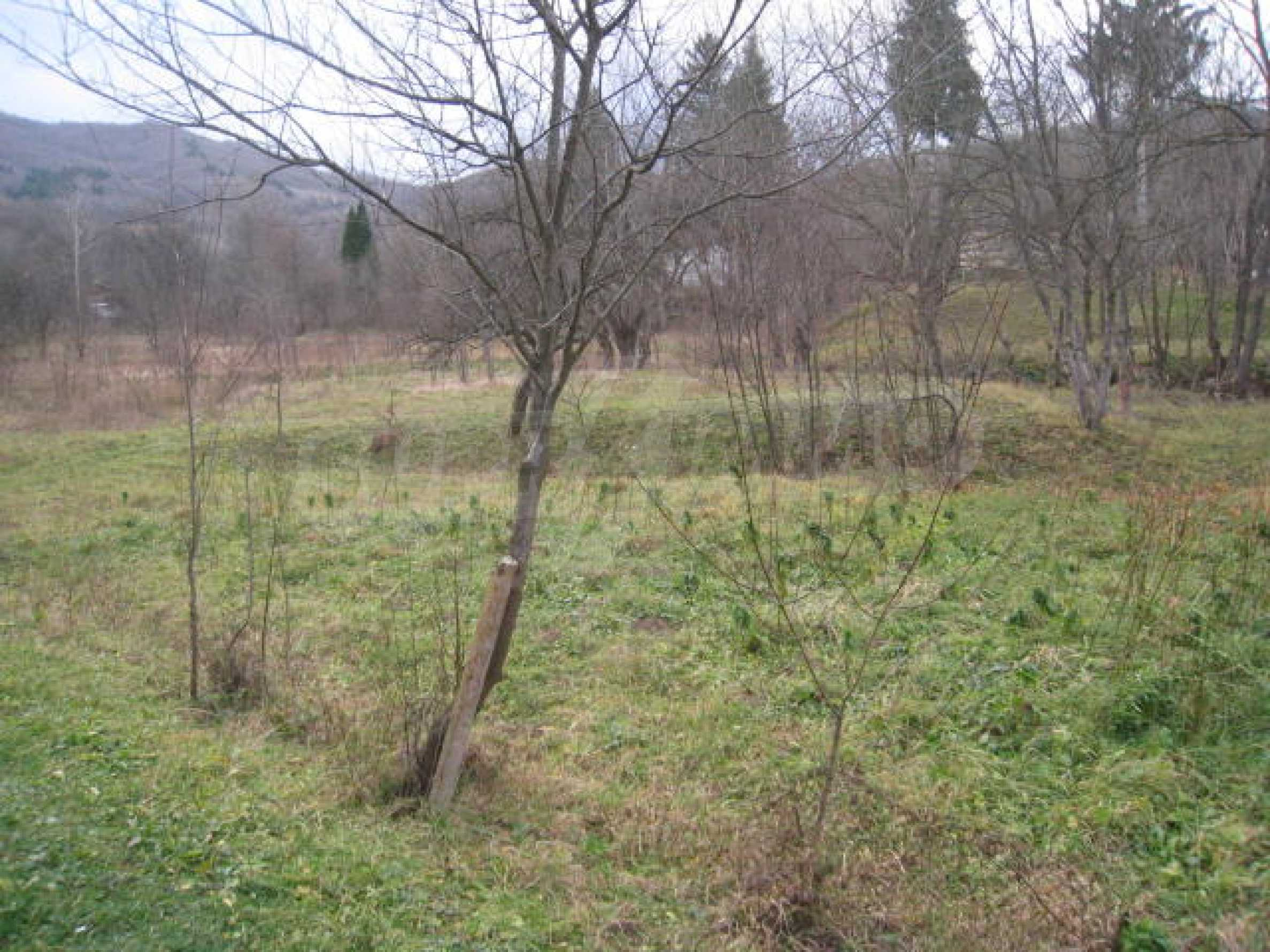 Large plot in regulation close to Klisura Monastery 4