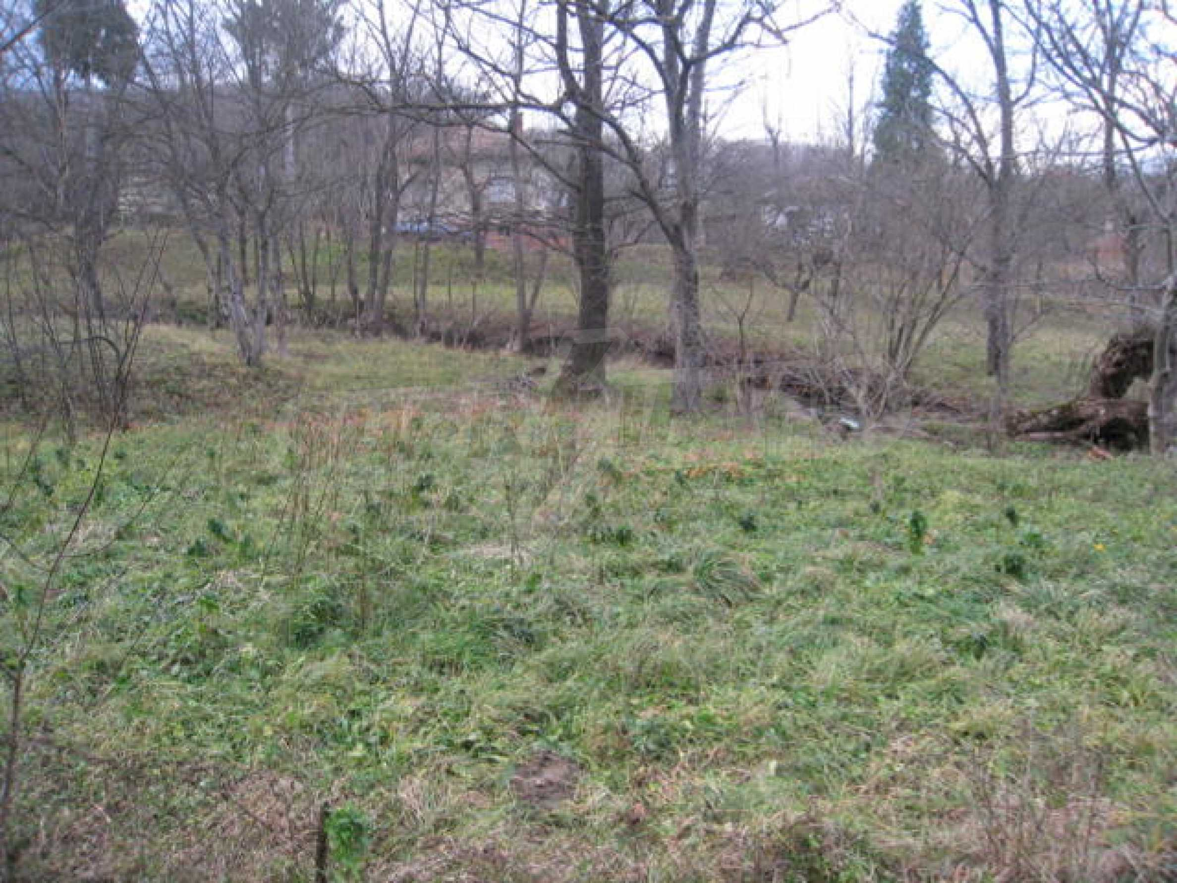 Large plot in regulation close to Klisura Monastery 5