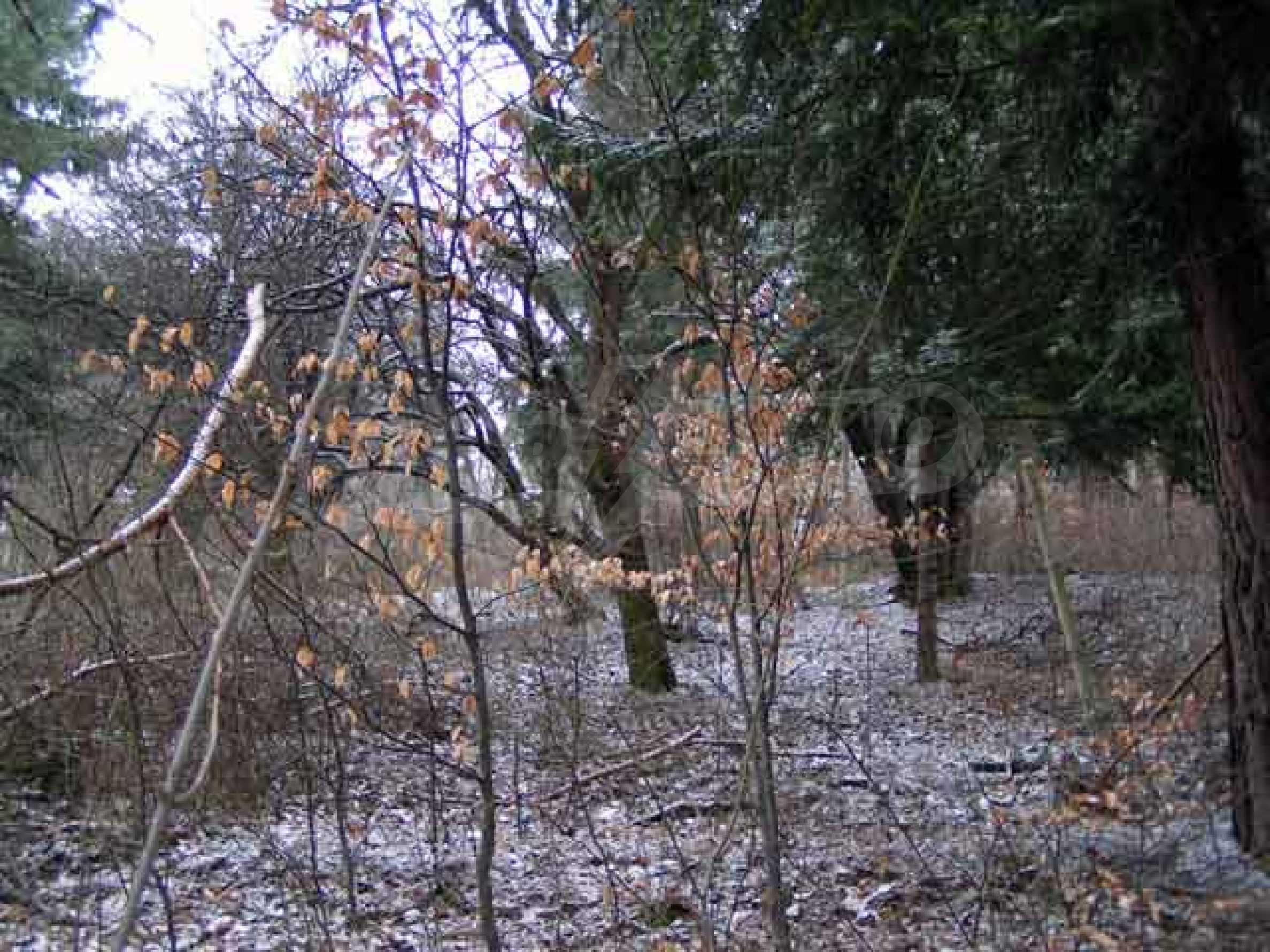Two plots for sale in Boyan, Sofia. 5