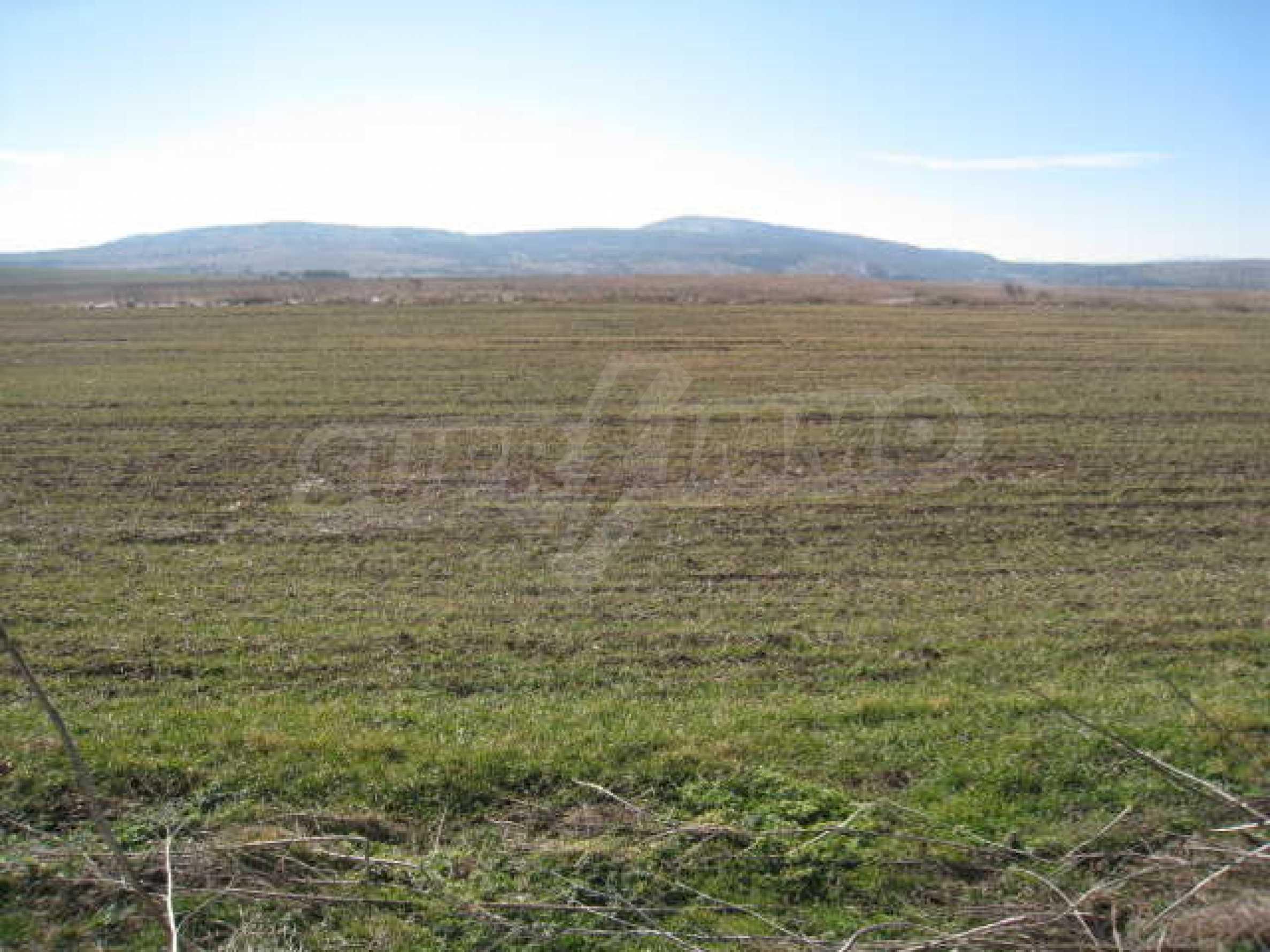 Хороший участок сельскохозяйственной земли 1