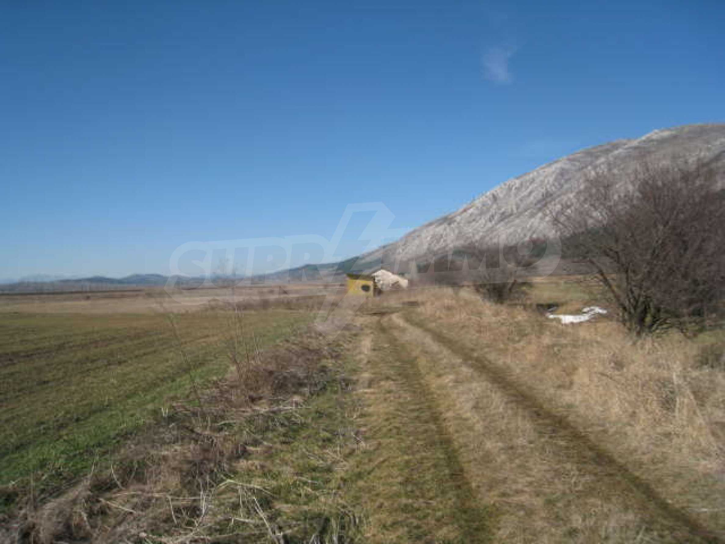 Хороший участок сельскохозяйственной земли 11